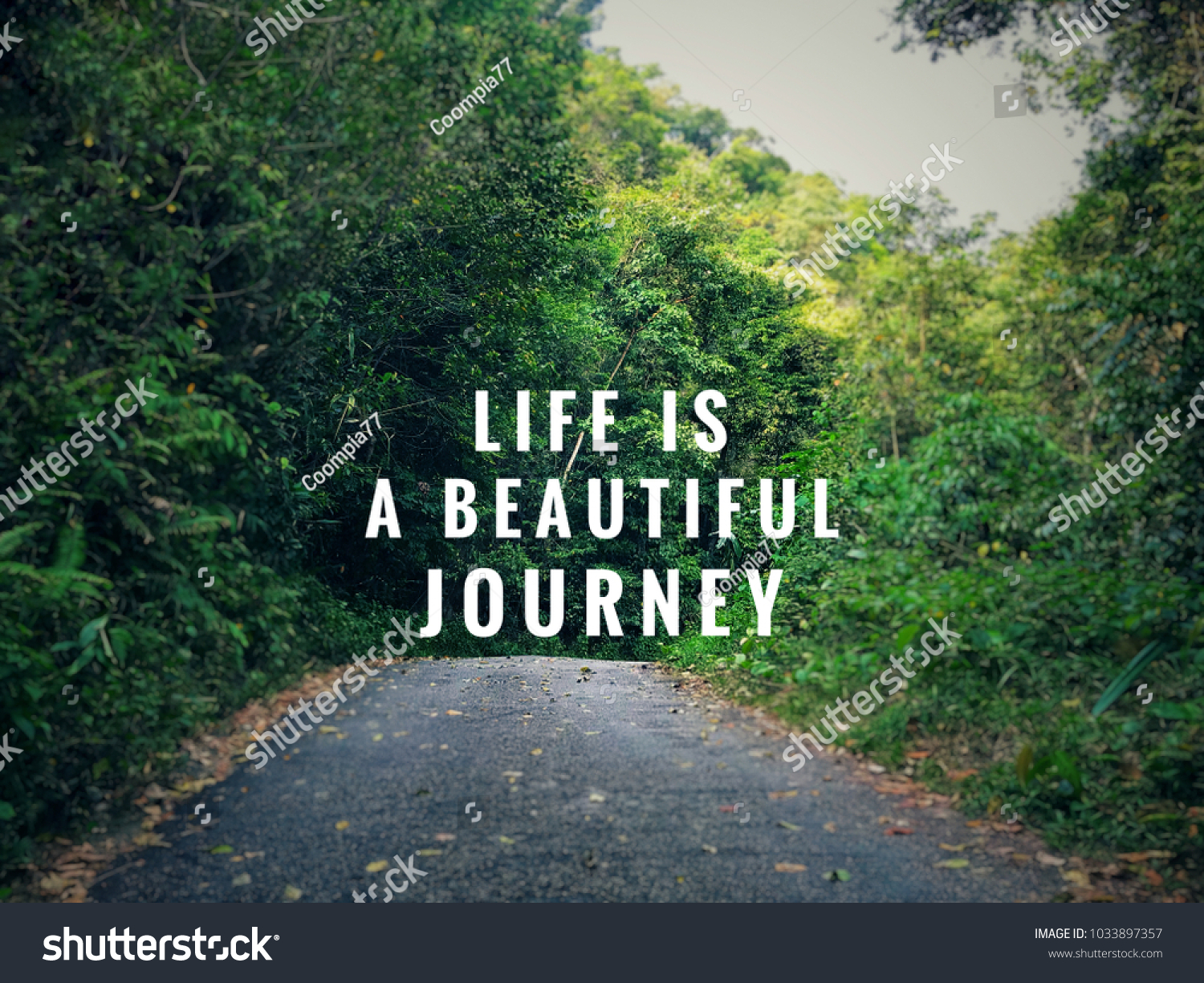Motivational And Inspirational Quotes   Life Is A Beautiful Journey. With  Vintage Styled Background.
