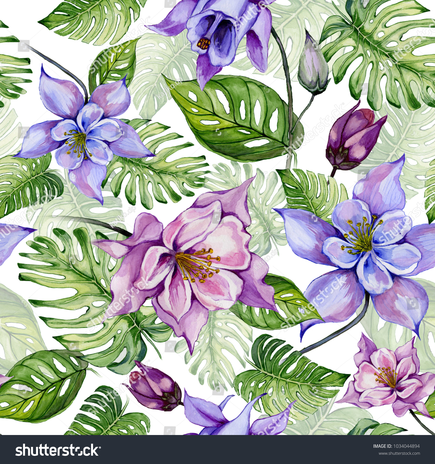 Beautiful Columbine Flowers Or Aquilegia And Exotic Monstera Leaves