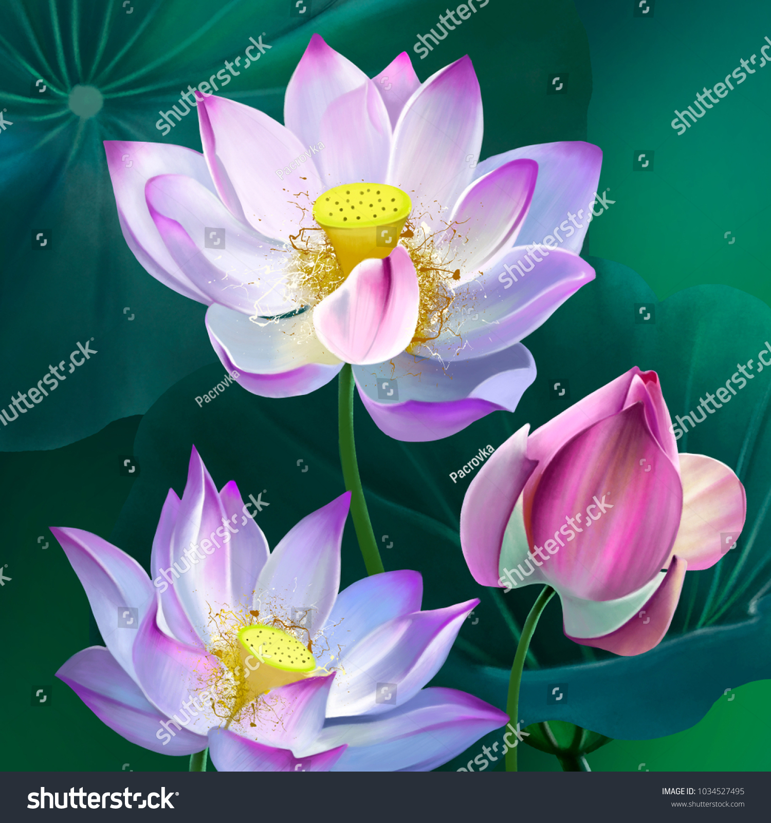 The divine bouquet of delicate lotus flowers surrounded by green id 1034527495 izmirmasajfo
