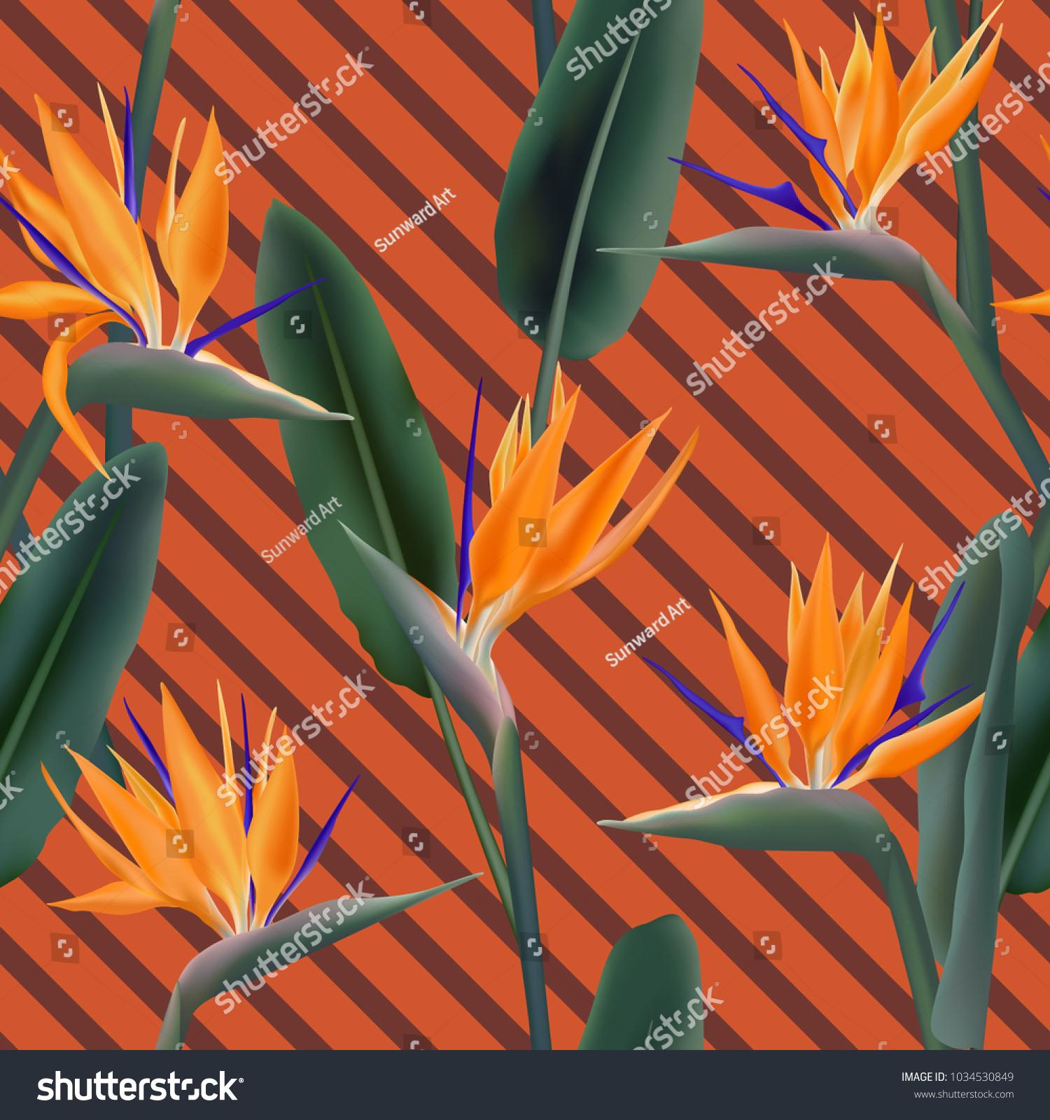 Bird Paradise Tropical Flower Vector Seamless Stock Vector ...