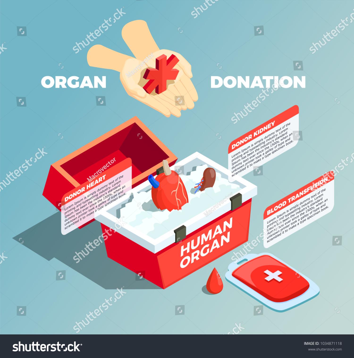 Organ Donation Isometric Composition Donor Kidney Stock Photo (Photo ...