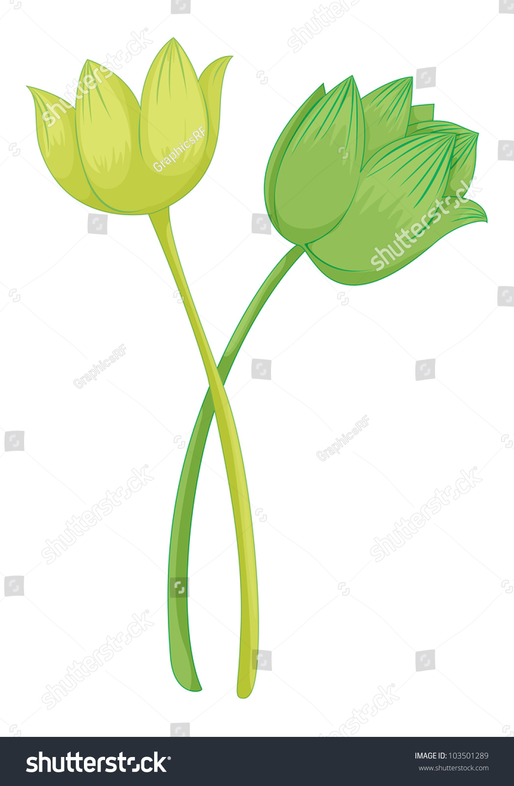 Illustration lotus flower eps vector format stock illustration illustration of a lotus flower eps vector format also available in my portfolio izmirmasajfo