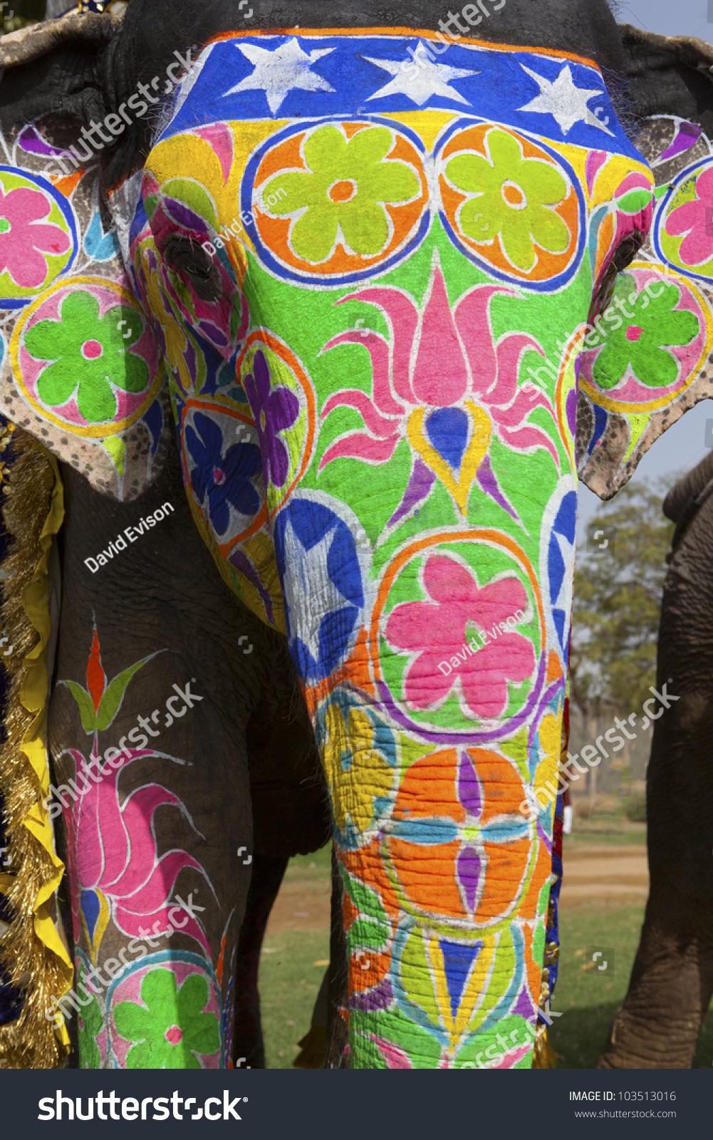 Decorated elephant face - photo#12