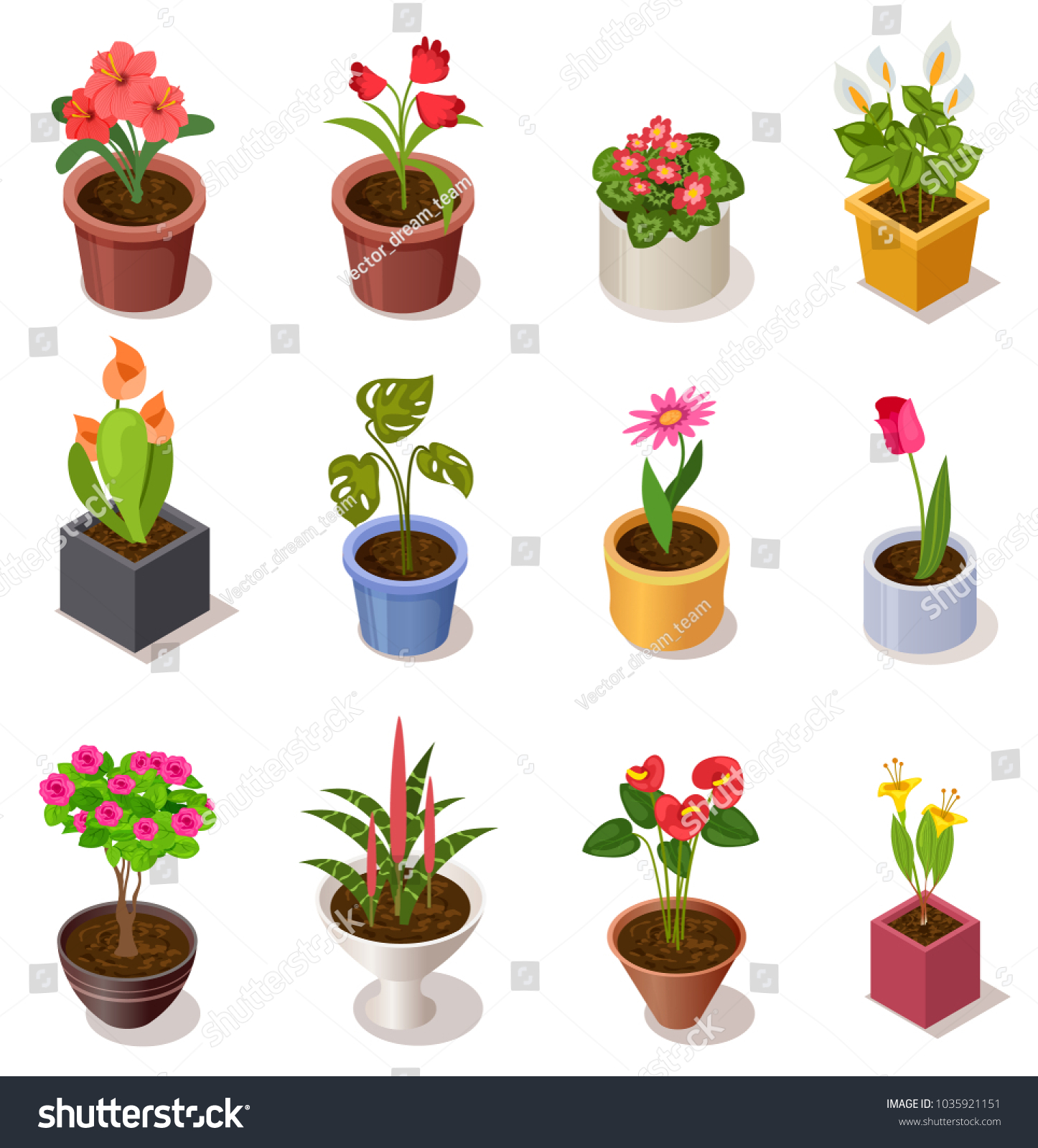 Colorful Isometric Flowers Ceramic Pot Collection Stock Vector
