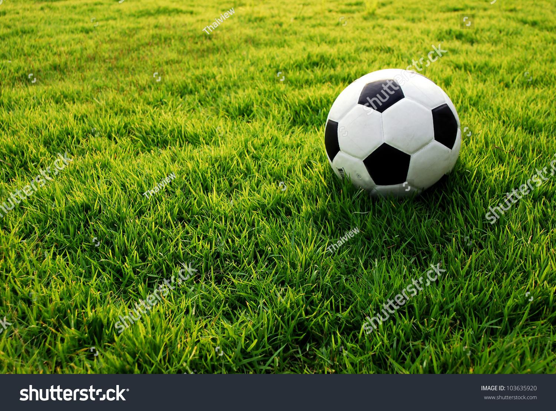 Football Green Grass Ball Stadium Football Stock Photo ...