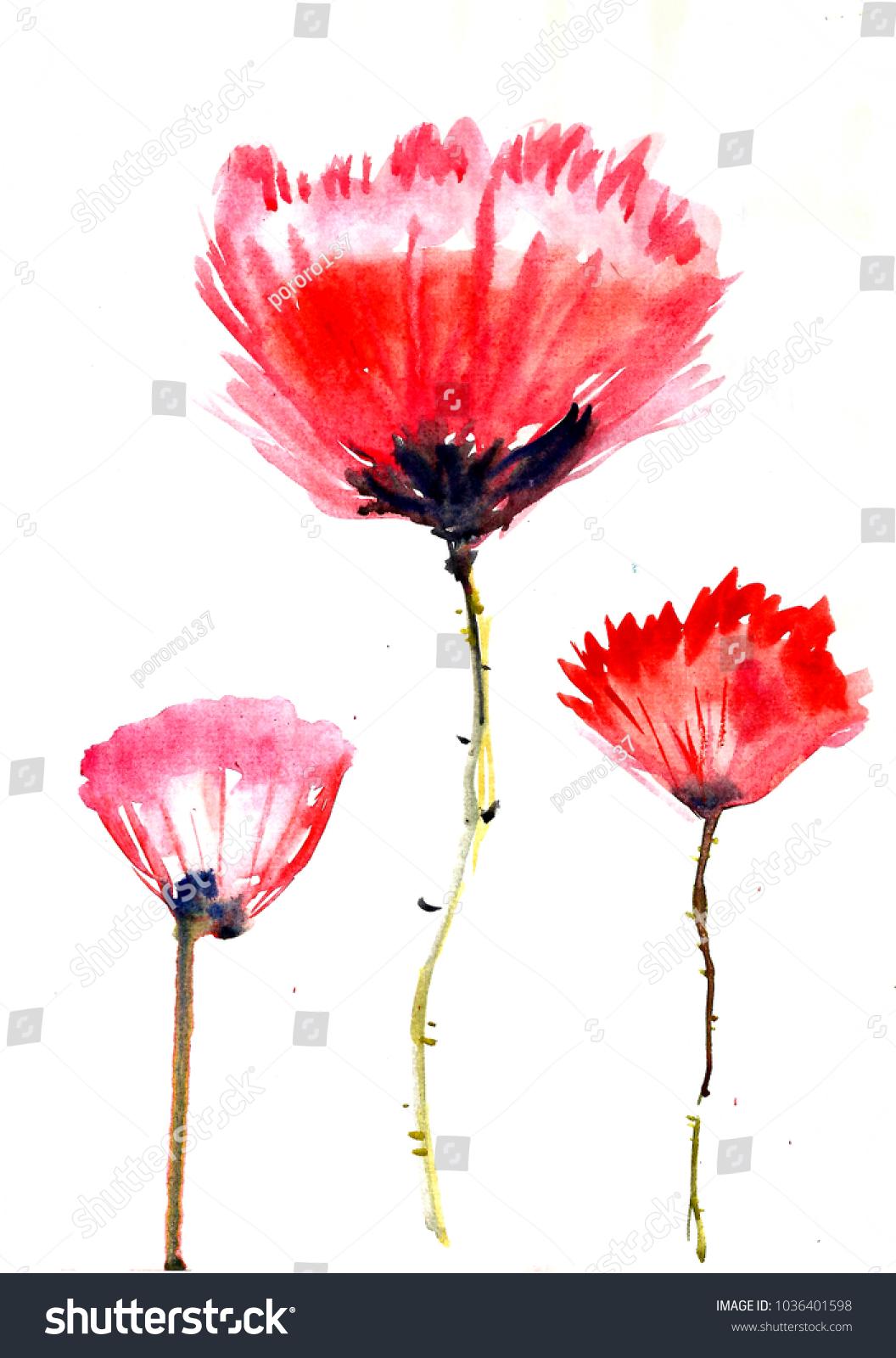 Watercolor Flower Poppy Leaves Flowers Peonies Stock Illustration