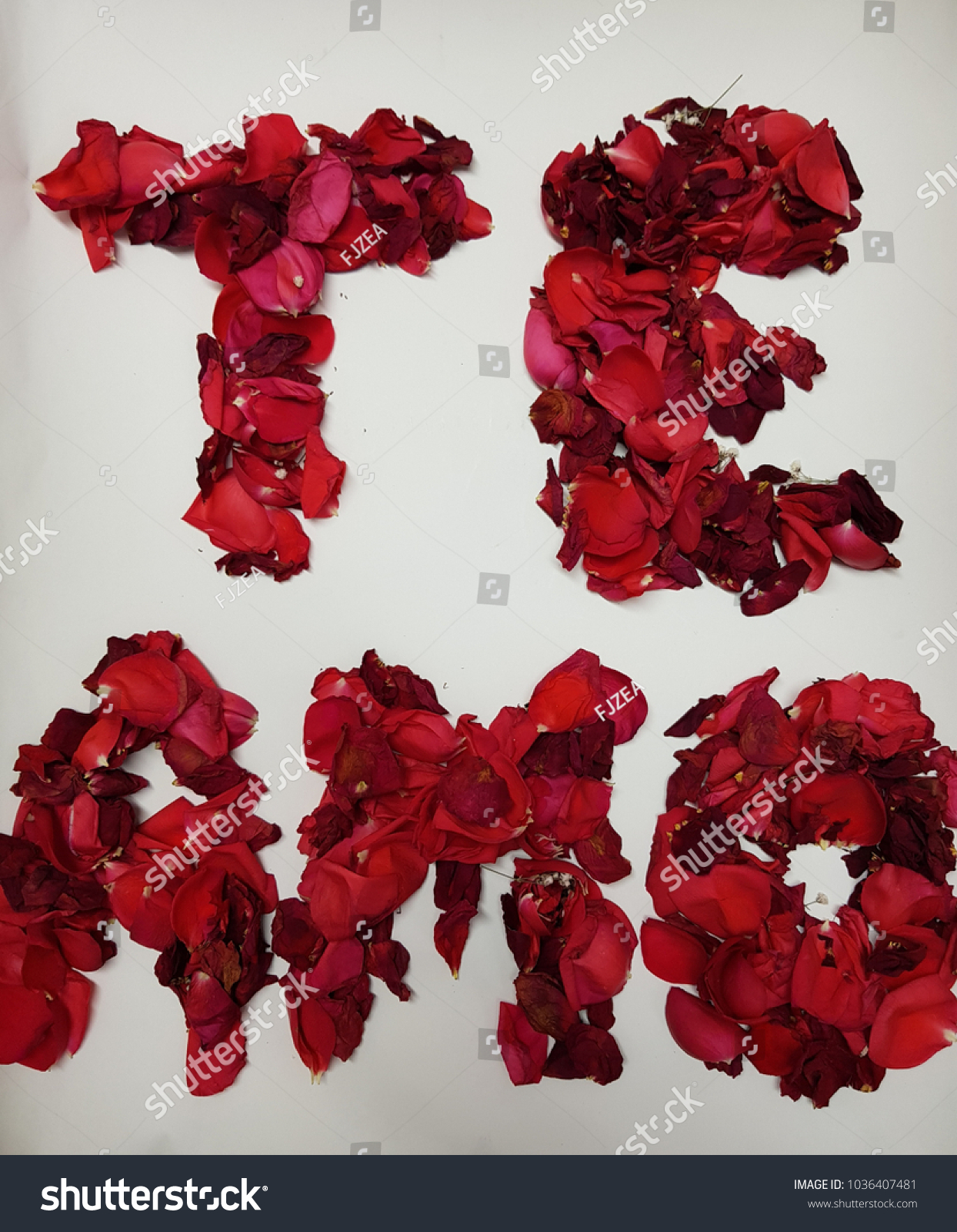Message love spanish te amo formed stock photo royalty free message of love in spanish te amo formed with red rose petals background izmirmasajfo