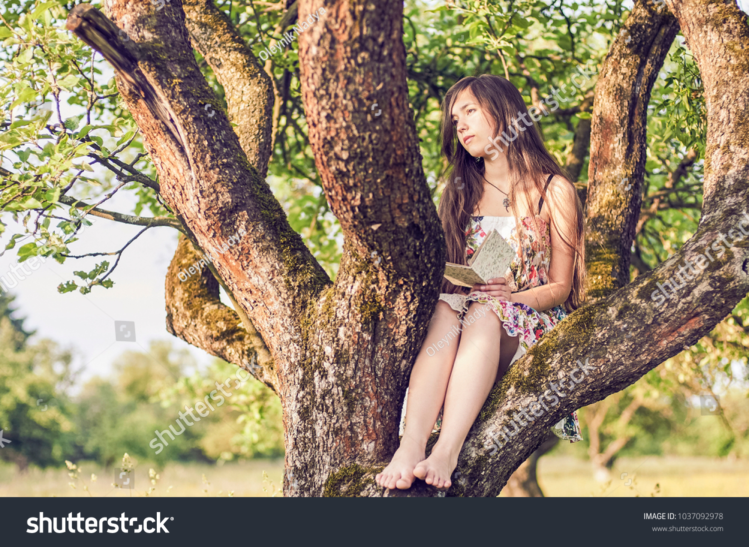 https://image.shutterstock.com/z/stock-photo-beautiful-romantic-girl-on-tree-with-book-1037092978.jpg