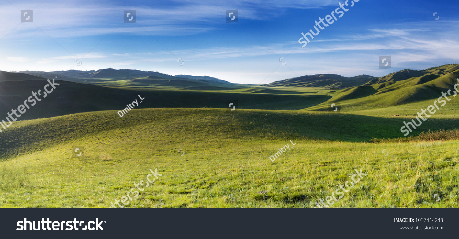 Distant hills. Hilly steppe. Curvy hills. Blue sky and grass. Beautiful plain. Sunny day and hills. Lowland. Hilly horizon. #1037414248