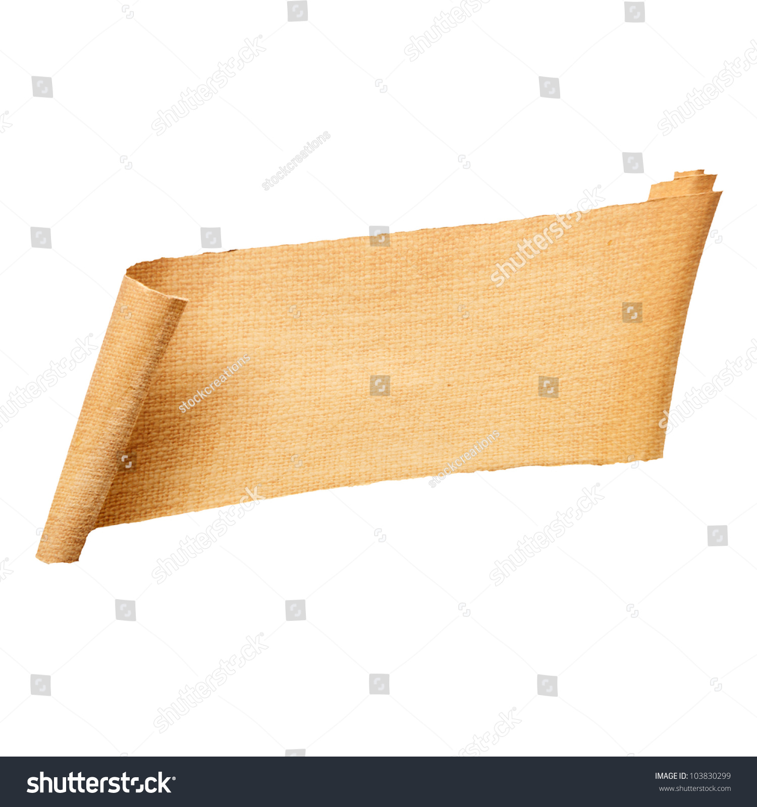 Blank Rolled Paper Banner Structure Fringed Stock Photo 103830299 ...