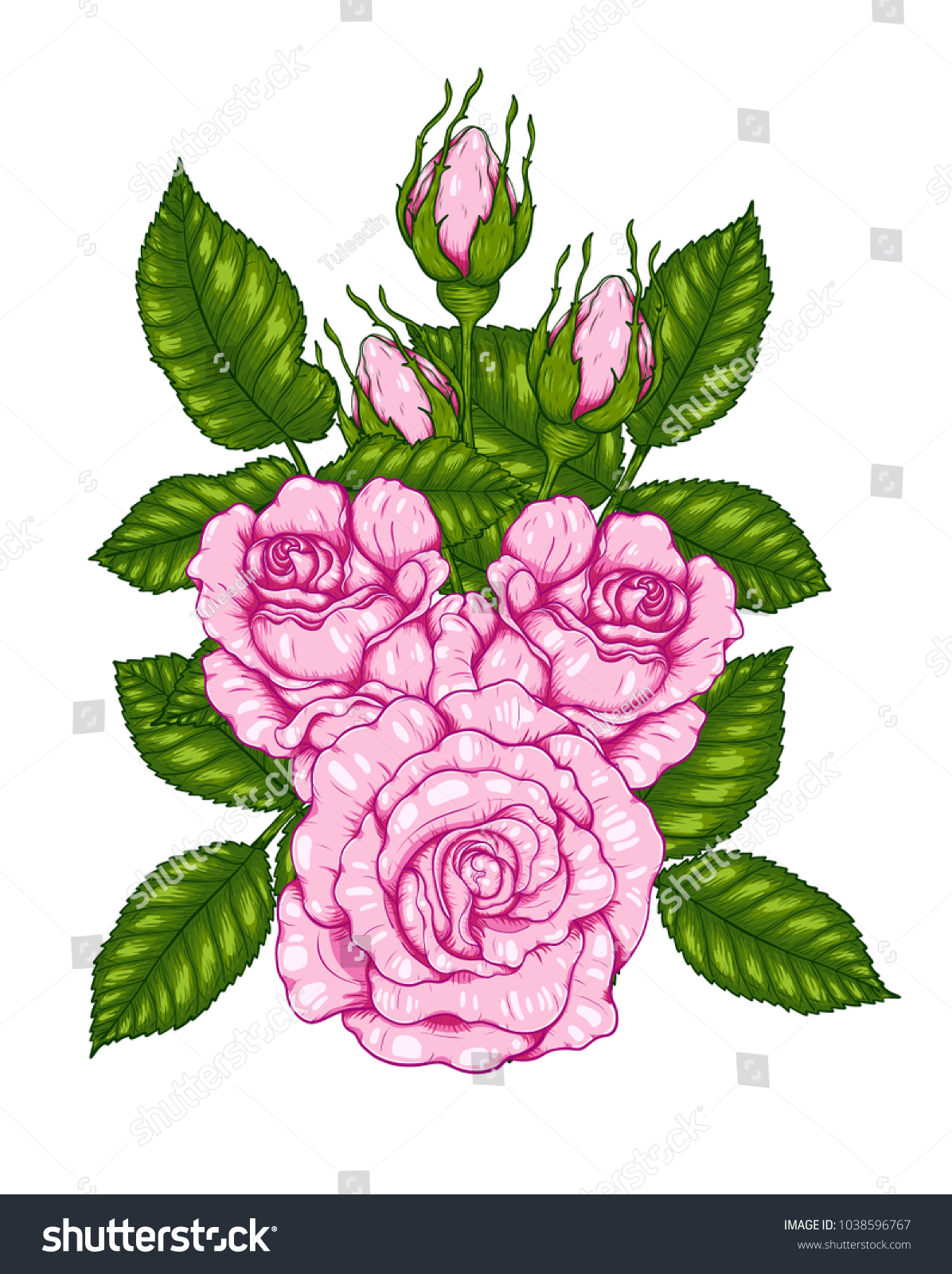 Rose Vector By Hand Drawing Beautiful Flower Stock Vector Royalty