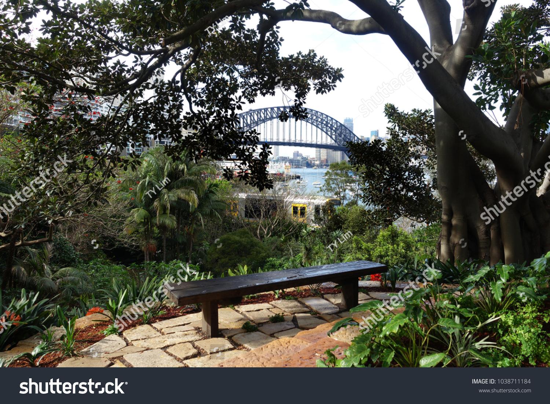 Groovy Harbour Bridge View Wendys Secret Garden Stock Photo Edit Andrewgaddart Wooden Chair Designs For Living Room Andrewgaddartcom