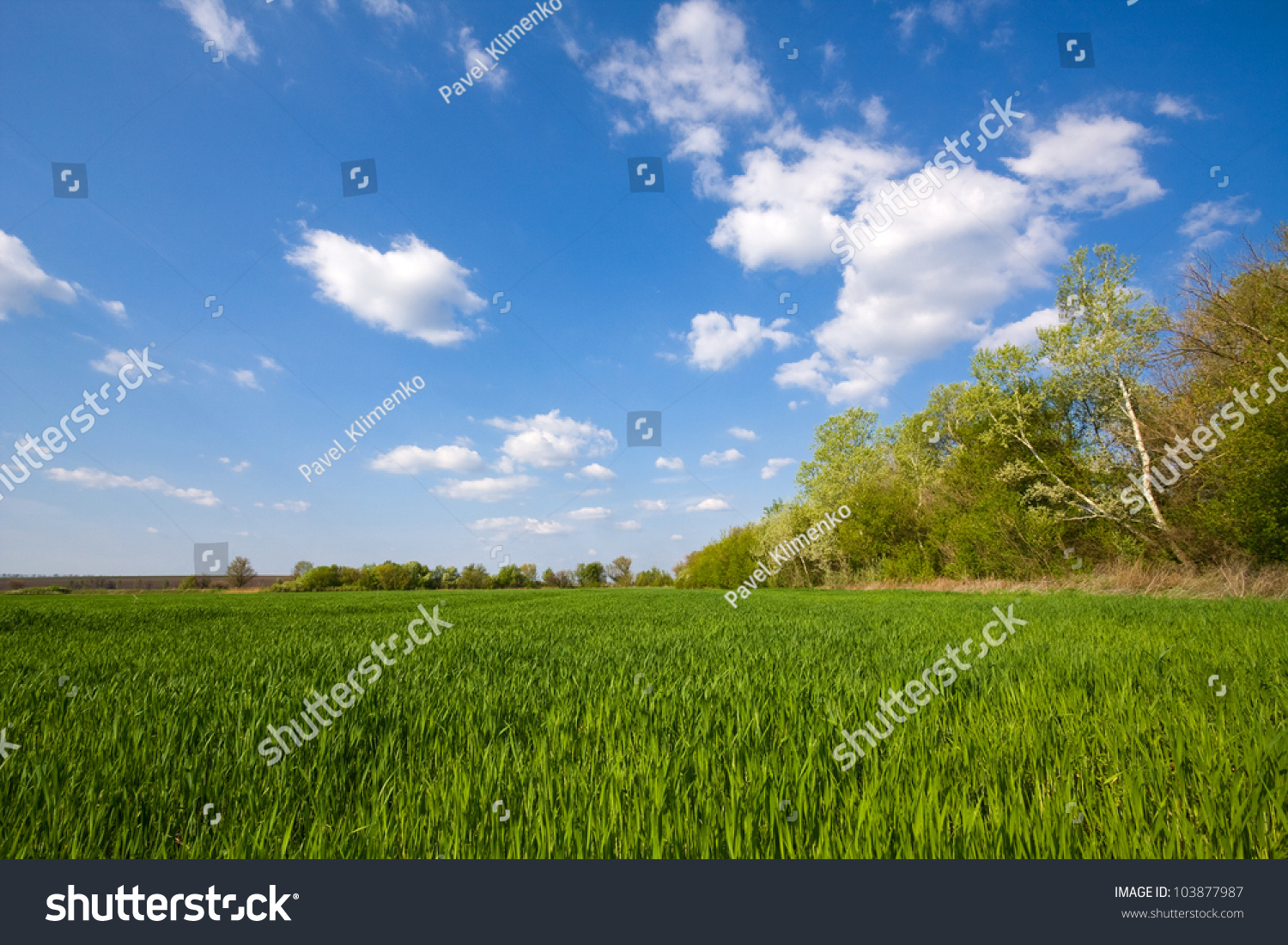Green Field Under Nice Sky With Clouds Stock Photo