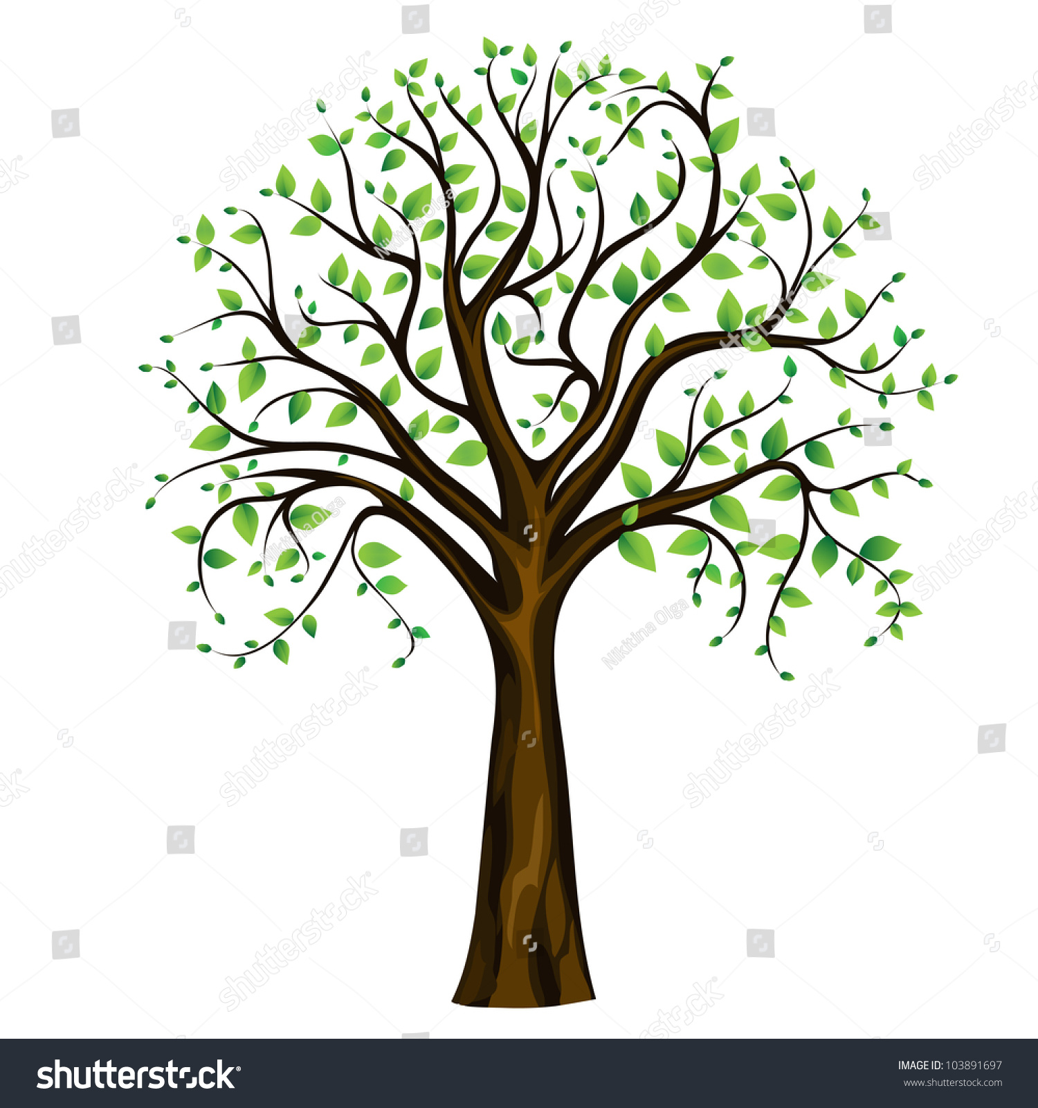 Spring Tree On White Background Vector Stock Vector 103891697 ...