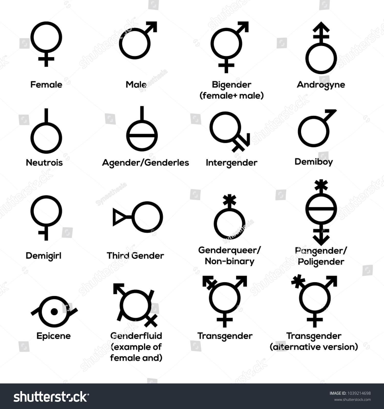 Gender Symbols Vector Stock Vector 1039214698 Shutterstock