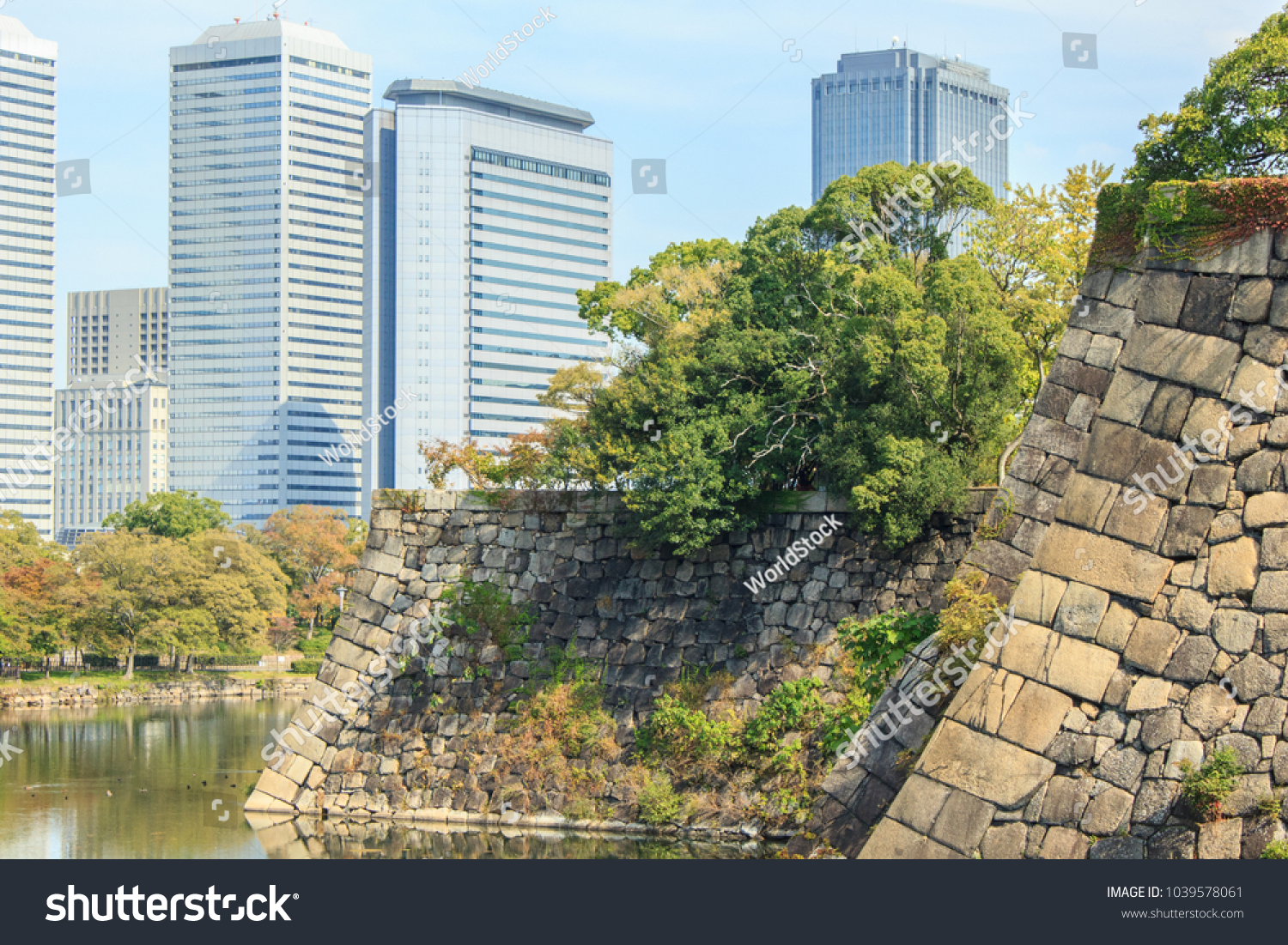 Office Towers Trees Bright Autumn Colors Stock Photo 1039578061 ...