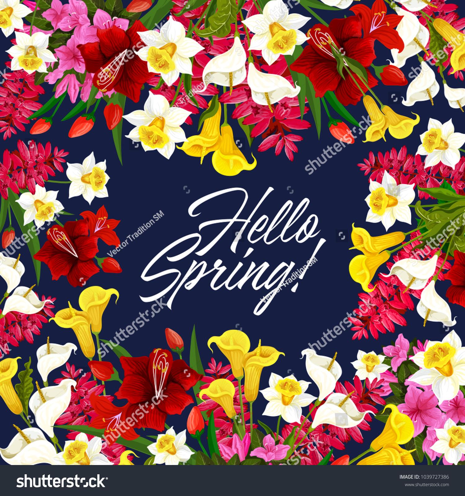 Hello Spring Floral Poster Garden Blooming Stock Vector Royalty