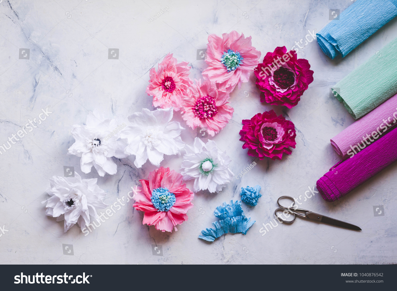 Paper Creative Flower Pastel Color Crepe Stock Photo Edit Now