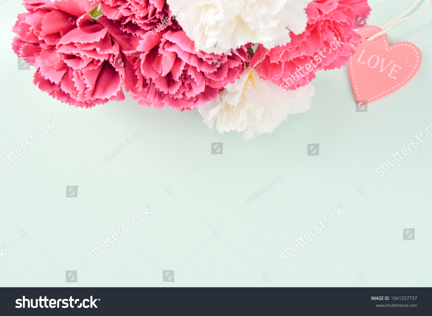 May Mothers Day Carnation Bunch Flowers Stock Photo & Image (Royalty ...