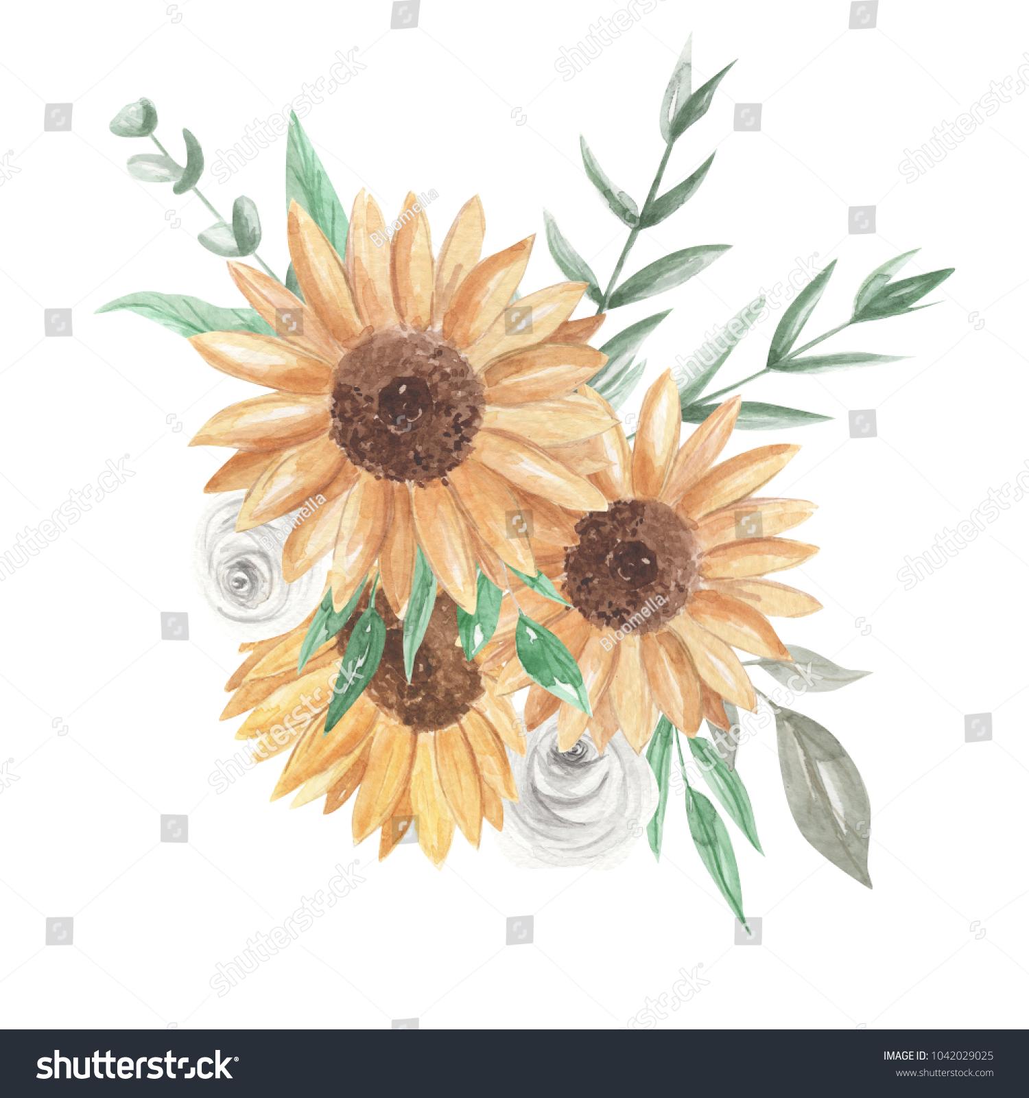 Sunflower White Rose Bouquet Eucalyptus Stock Illustration 1042029025