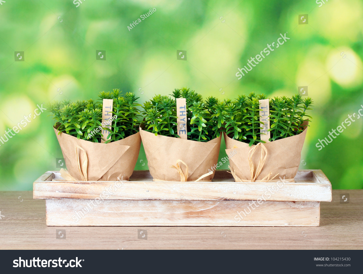 herbal plants research paper Using herbal plants for medicine, a section of a research study 1162 words | 5 pages for medicinal use herbal drugs are derived either from whole plant or from.