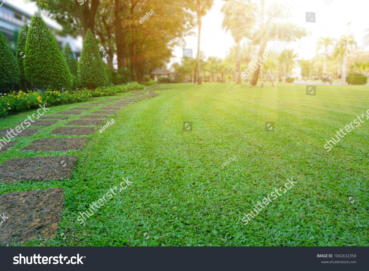 Pattern of Laterite stepping stone on a green Lawn backyard in the public park, Ficus and shurb on the left , Trees in background under evening sunlight