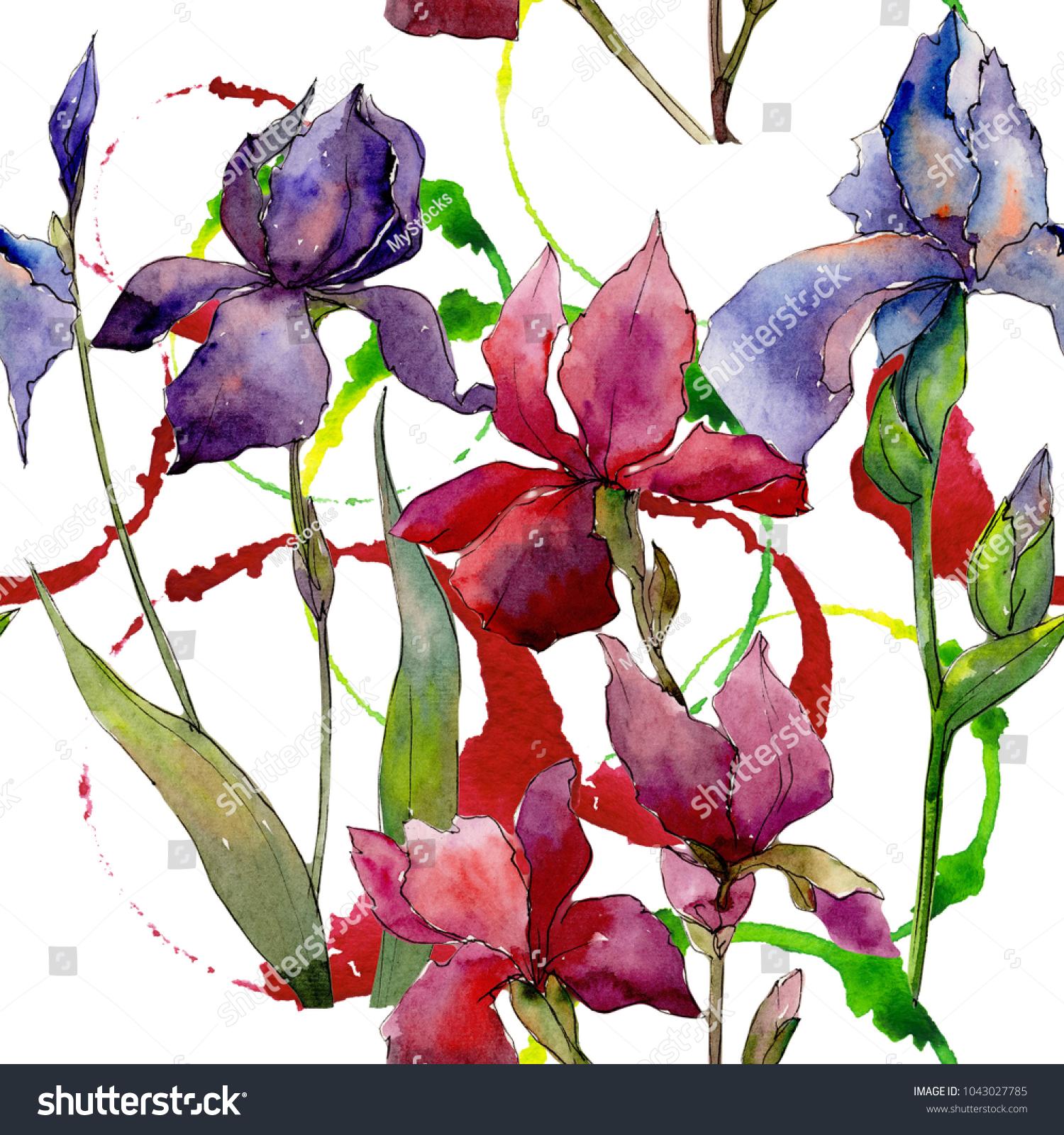 Wildflower Iris Flower Pattern Watercolor Style Stock Illustration ...