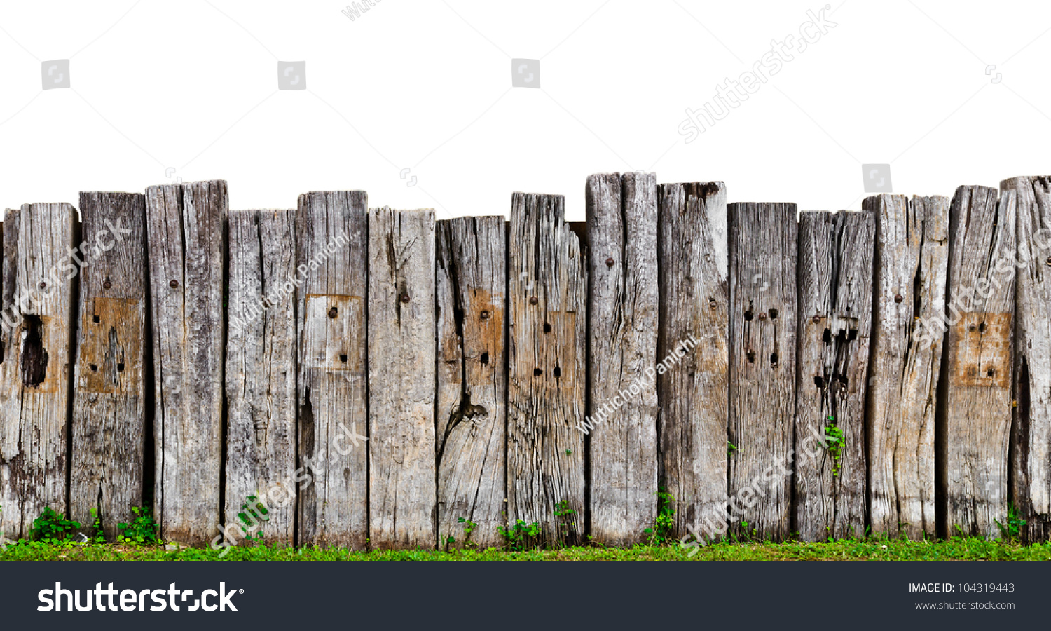 Old wooden fence garden plant stock photo