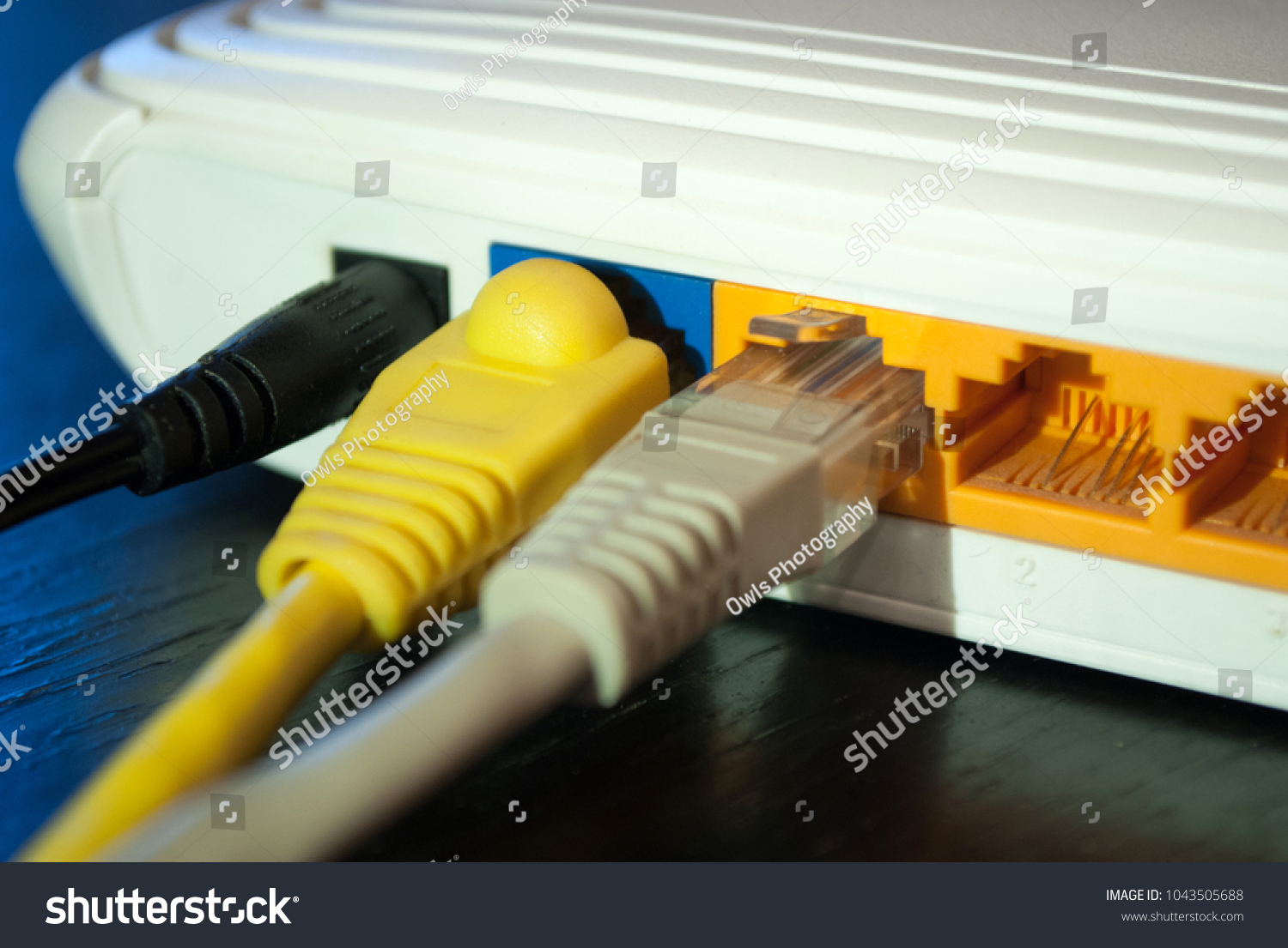 Internet UTP cable plugs in Wifi router. Close up. Internet concept ...