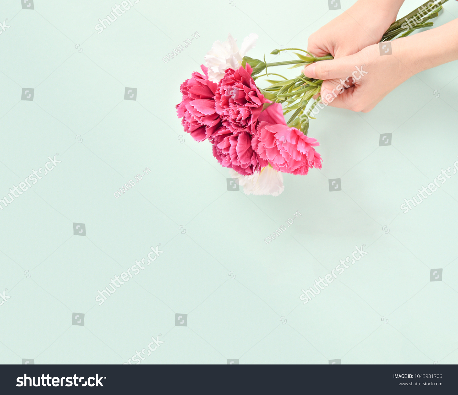 May Mothers Day Carnation Bunch Flowers Stock Photo Edit Now