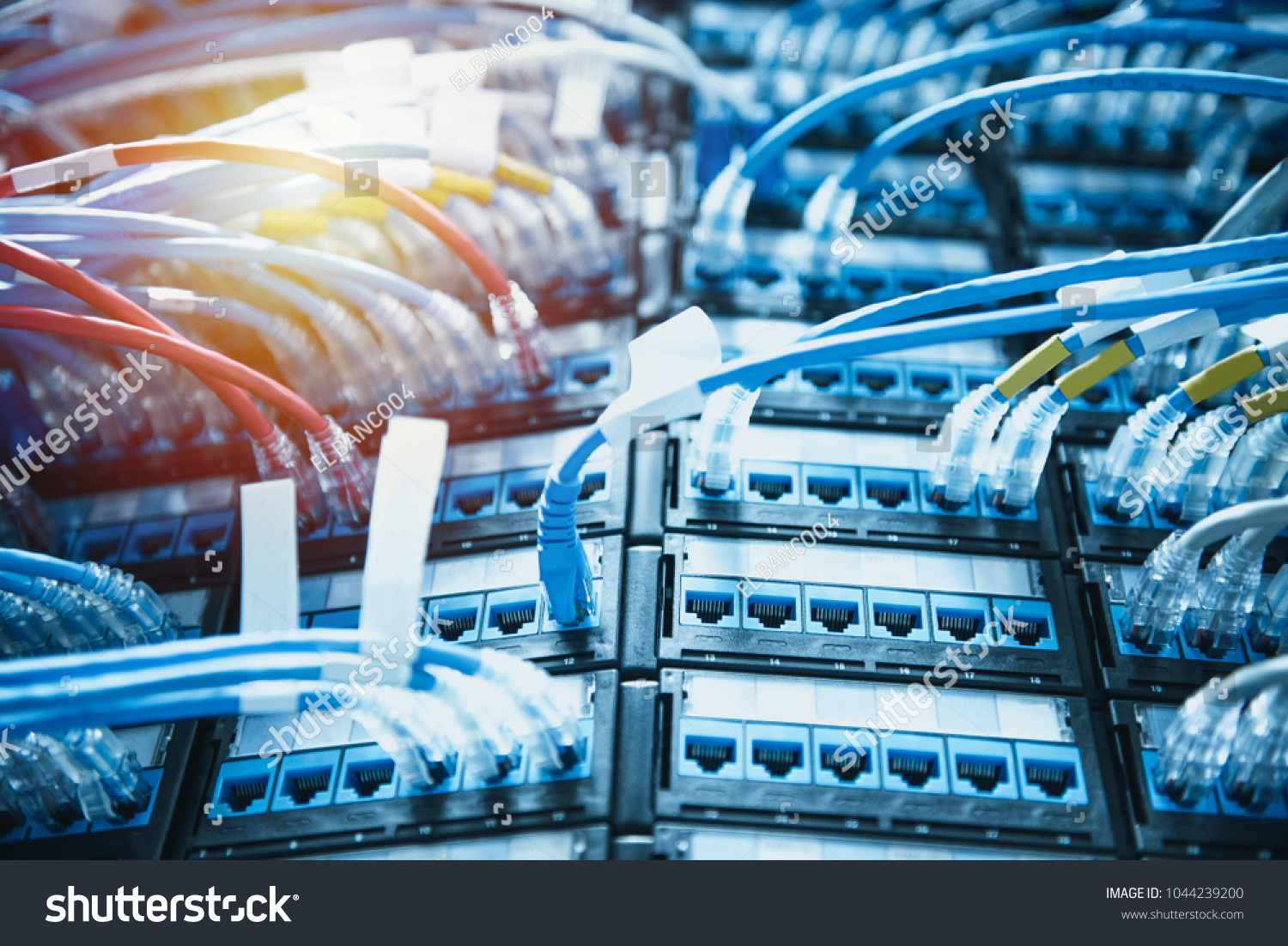 Ethernet Cables Connected On Patch Cord Stock Photo (Safe to Use ...