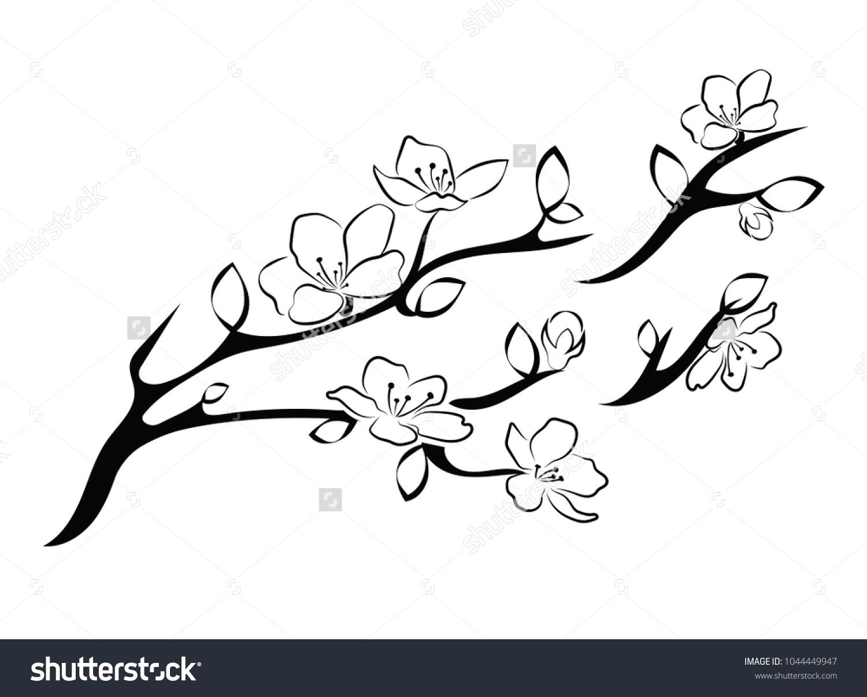 Image Vectorielle De Stock De Cerise En Fleurs Branche De