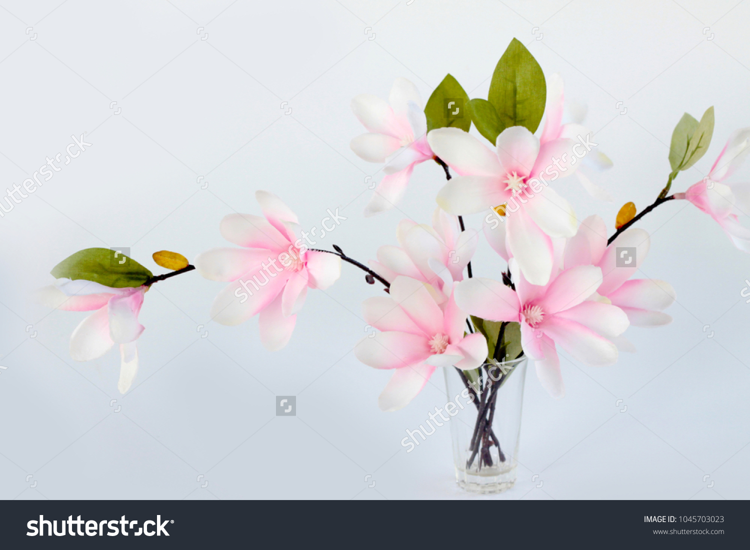 Beautiful Pink Magnolia Flower Bouquet On Stock Photo (Edit Now ...