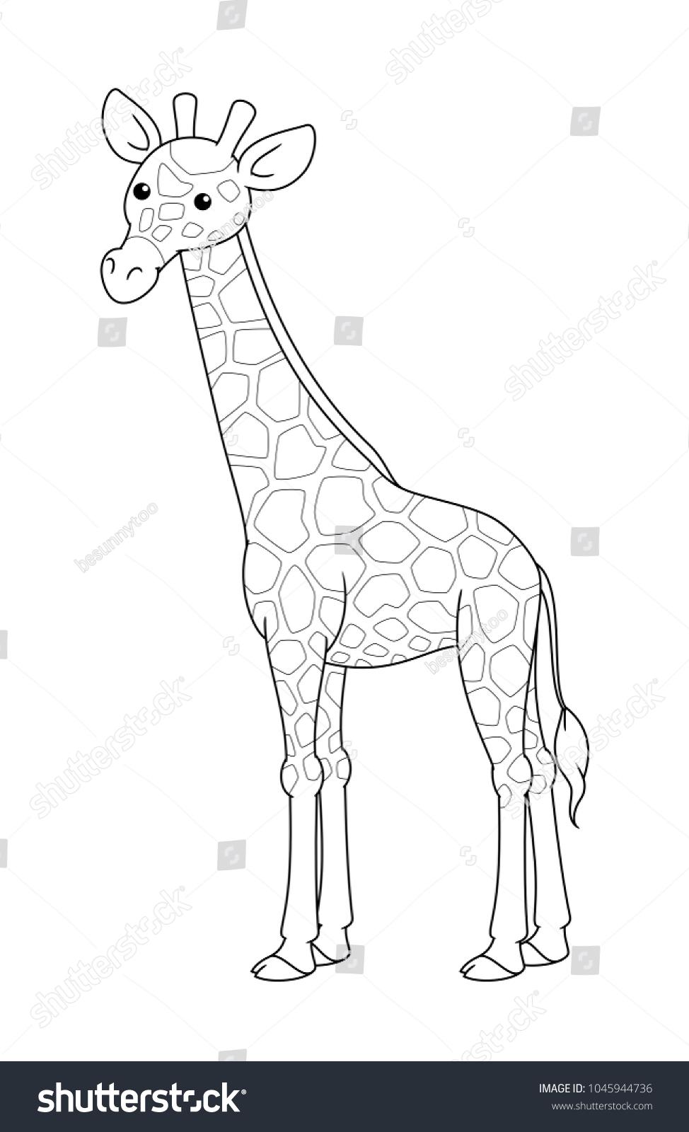 Black White Cute Cartoon Giraffe Coloring Stock Vector Royalty Free