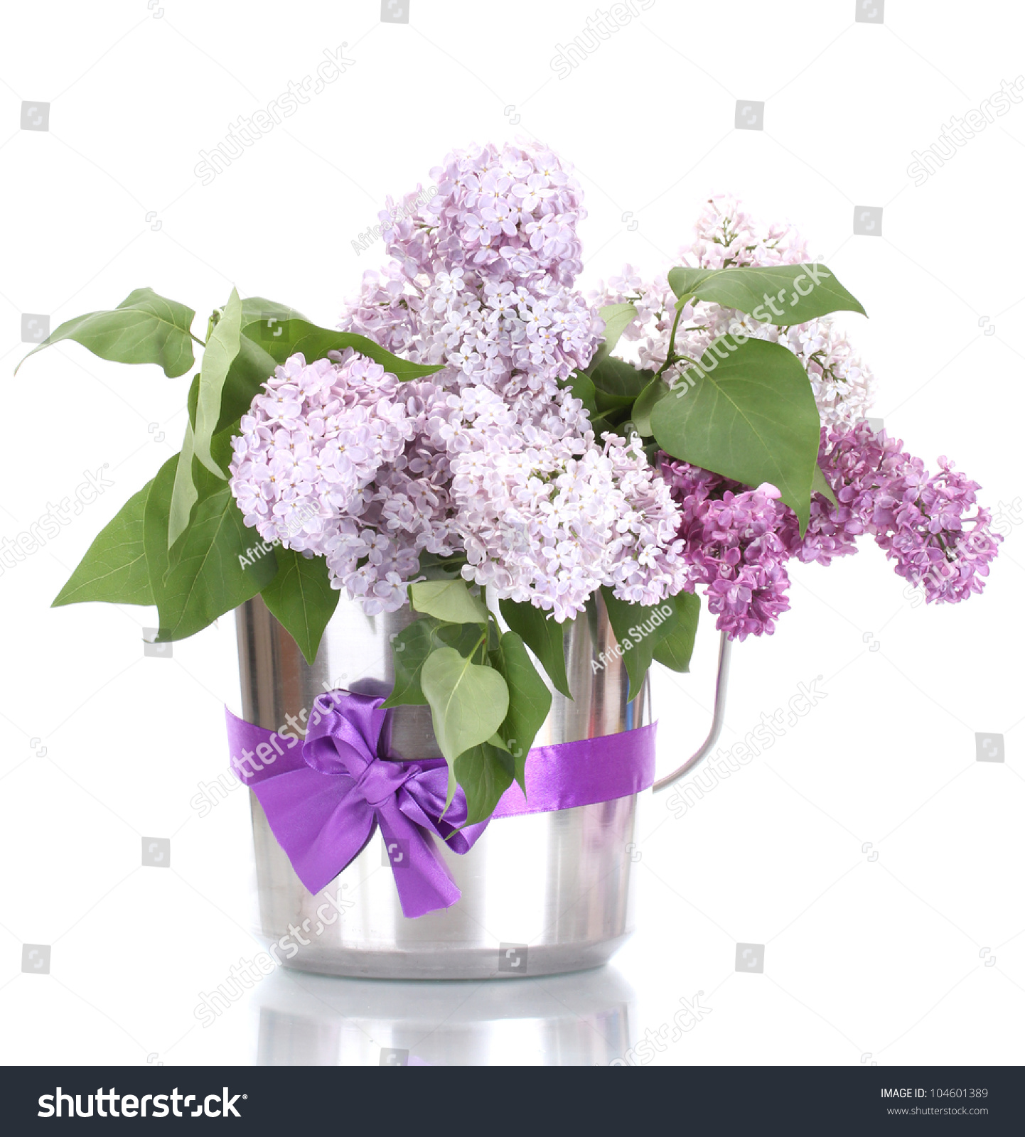 Beautiful Lilac Flowers In Metal Bucket Isolated On White ...