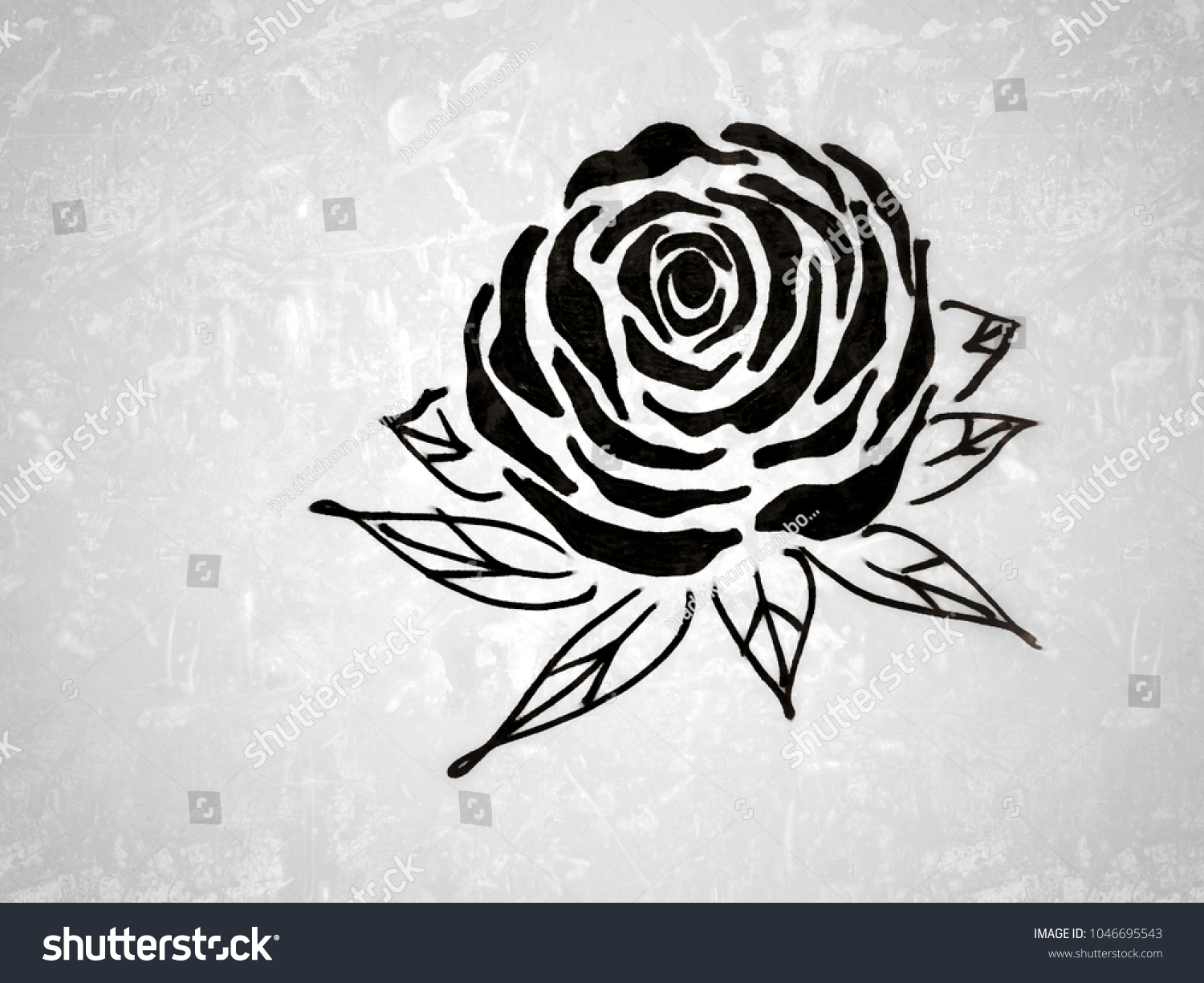 Drawing beautiful black rose flower blossom stock illustration drawing beautiful black rose flower blossom with space for textdecorative series with pen izmirmasajfo