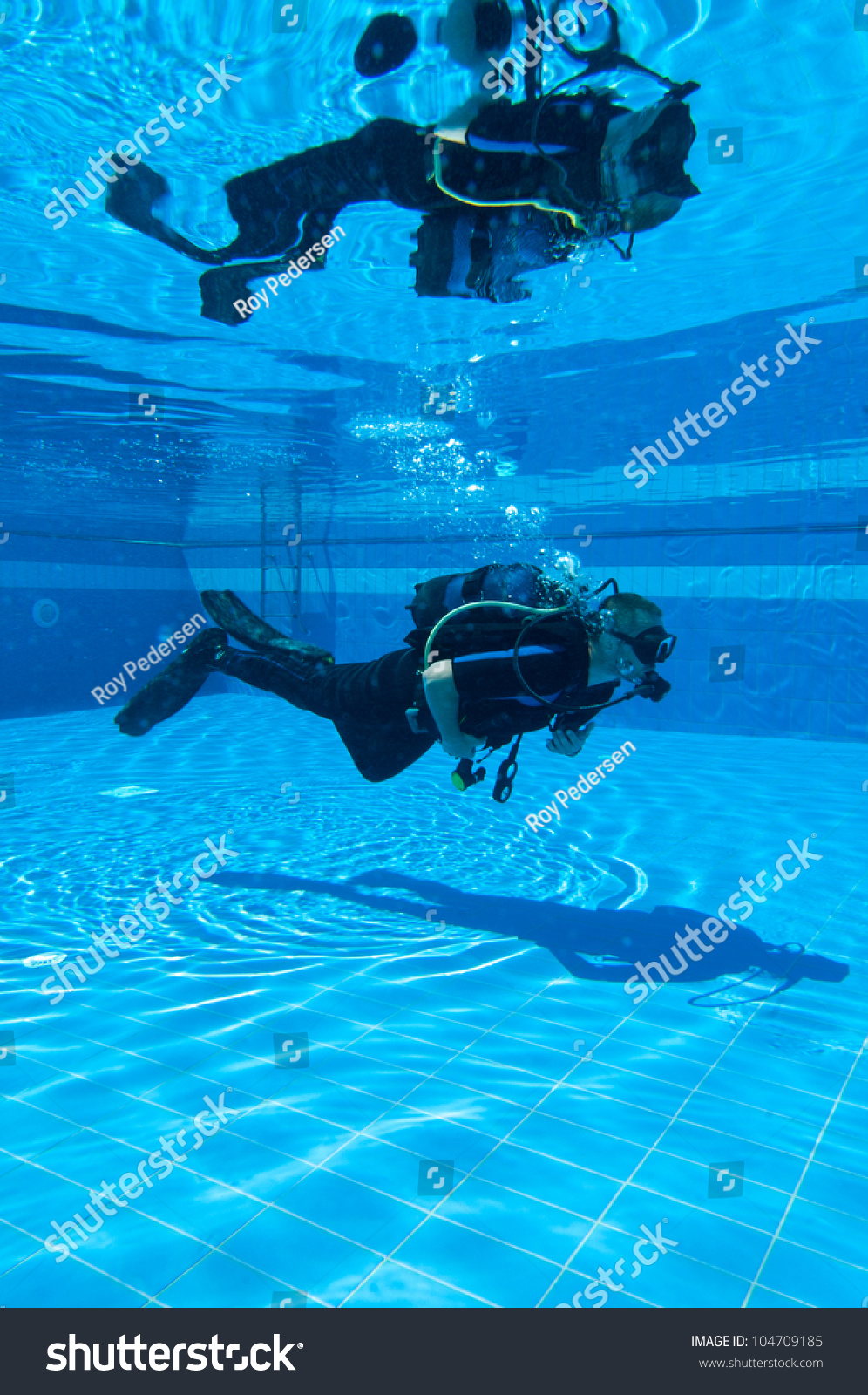 Learning To Scuba Dive In A Swimming Pool Stock Photo 104709185 Shutterstock