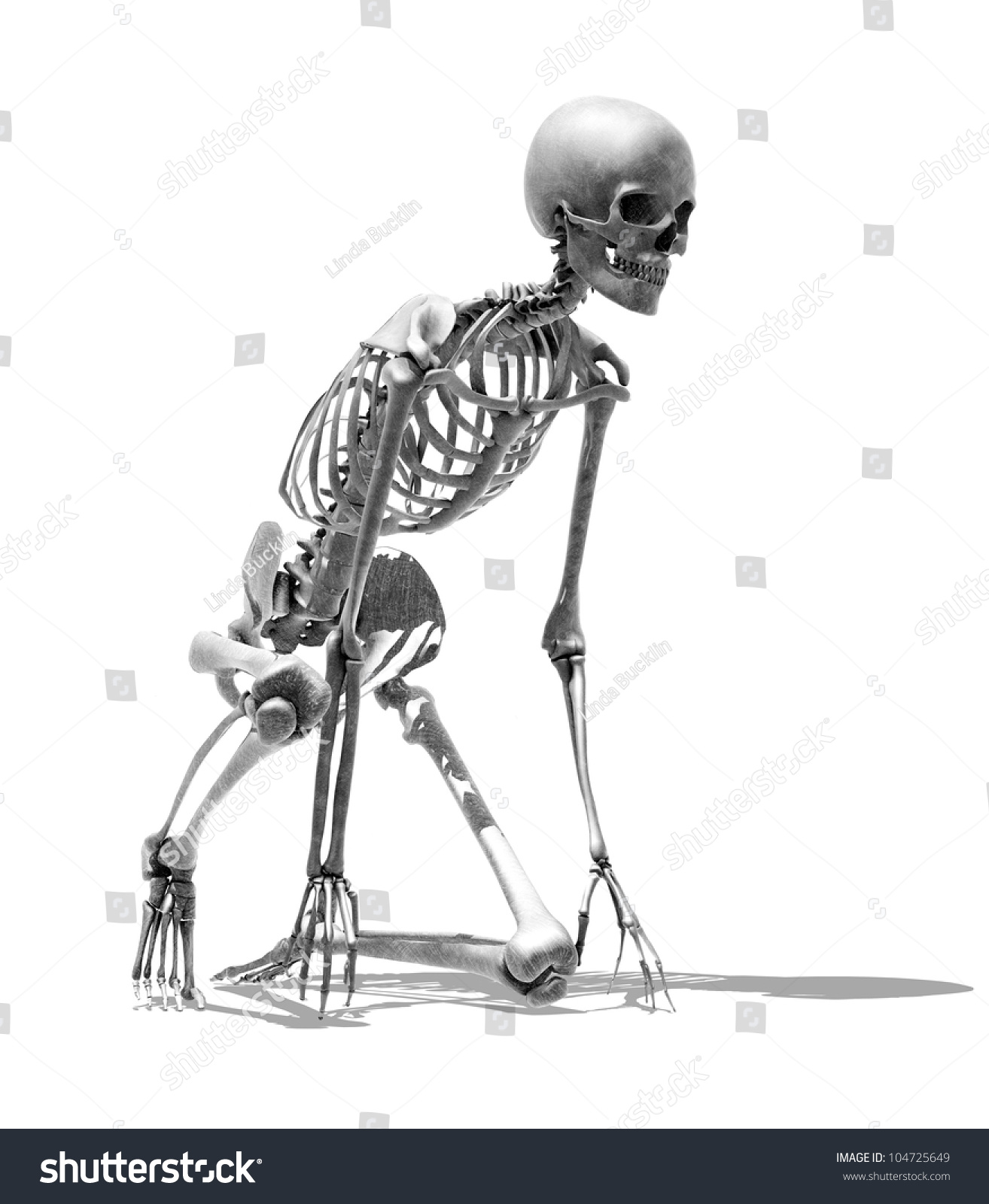 3 D Render Skeleton Runners Starting Pose Stock Illustration ...