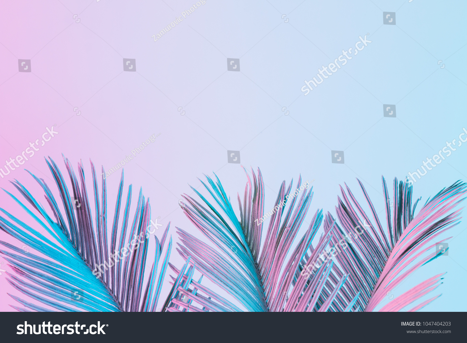 Tropical and palm leaves in vibrant bold gradient holographic colors. Concept art. Minimal surrealism. #1047404203 - 123PhotoFree.com