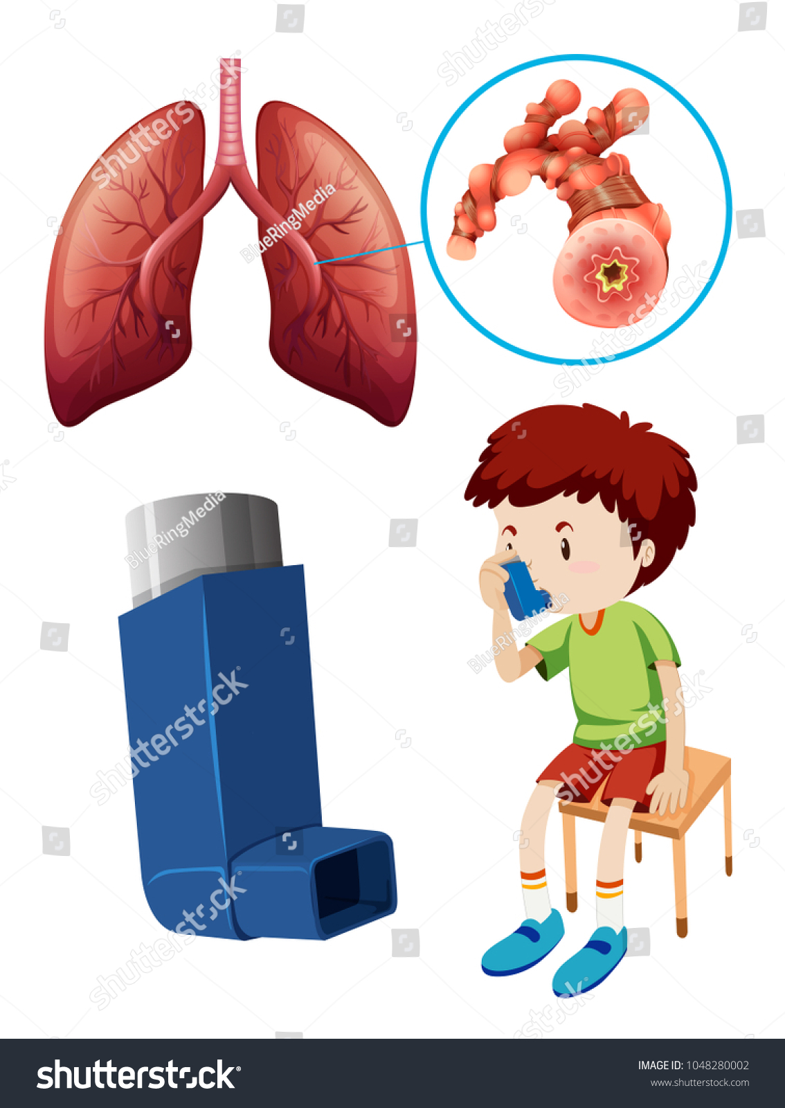 Kid Asthma Puffer Lung Anatomy Stock Vector HD (Royalty Free ...