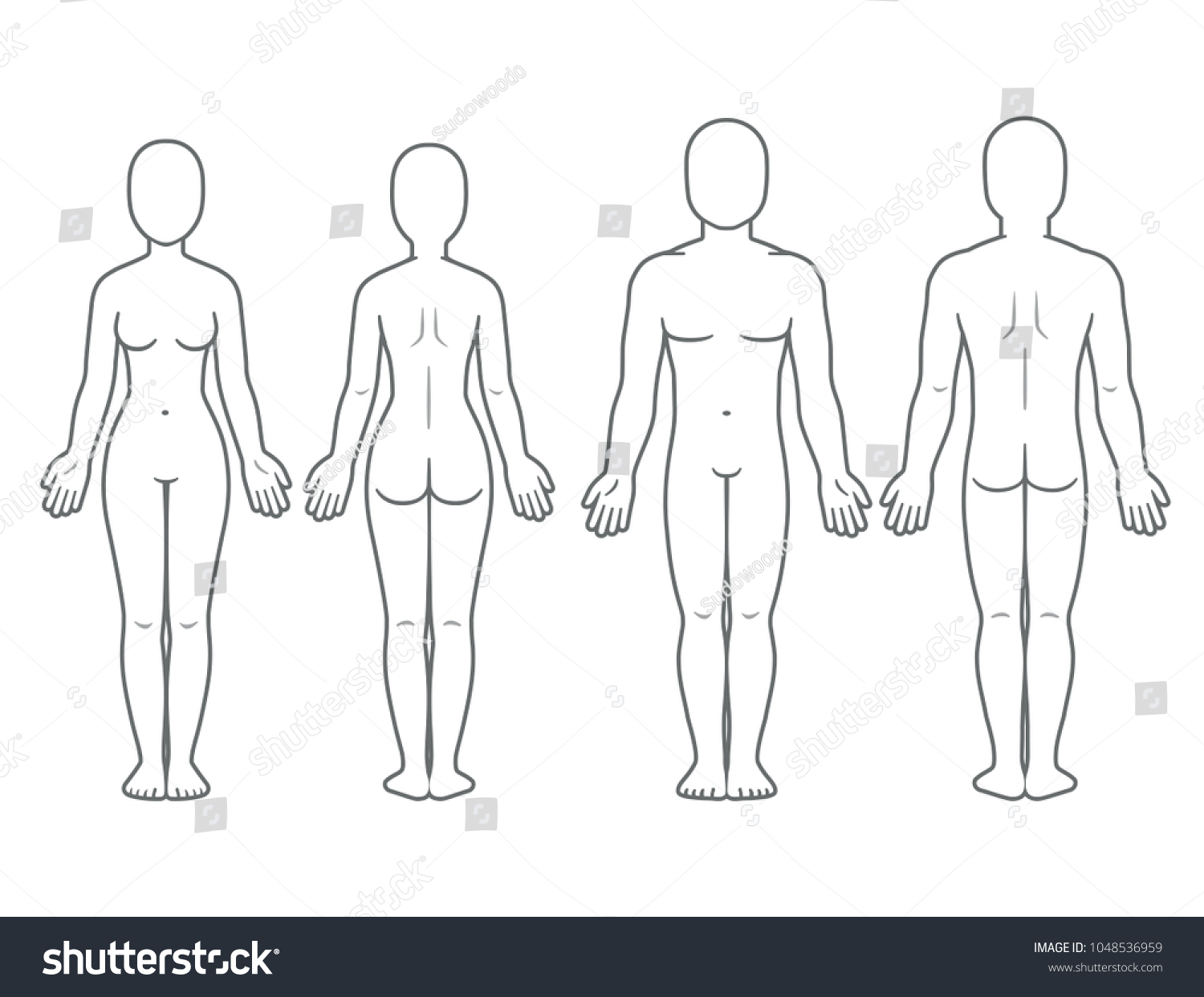 Female body diagram front and back information of wiring diagram male female body front back view stock illustration 1048536959 rh shutterstock com blank medical body diagram ccuart Gallery