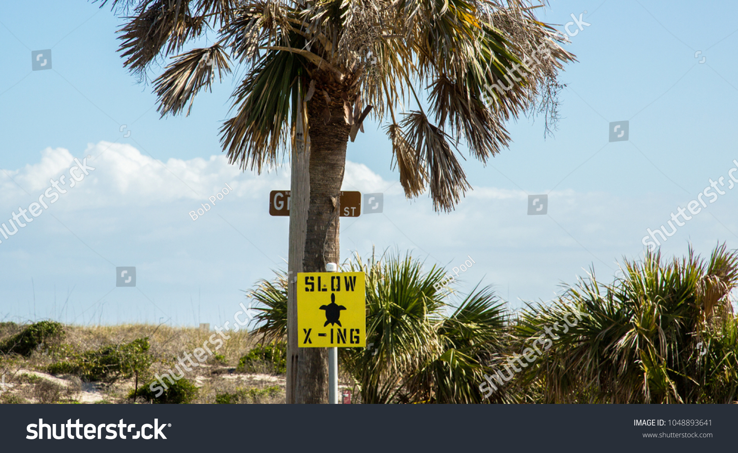Slow Turtle Crossing >> Slow Turtle Crossing Sign Near Beach Stock Photo Edit Now 1048893641