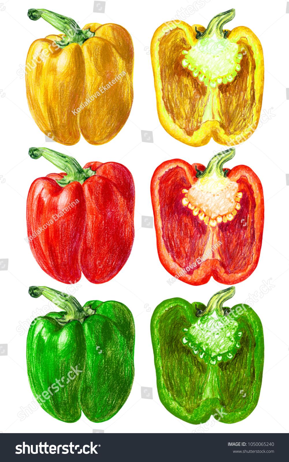 Enchanting Green Colored Fruits Ideas - Drawing Coloring ...