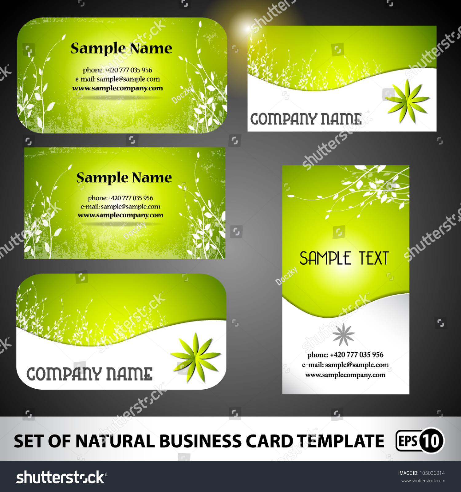 set natural floral business card template stock vector