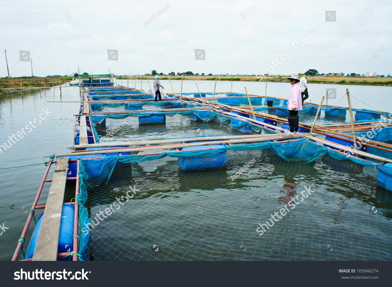 Fish farm located thailand country stock photo 105046274 for Fish farms in texas