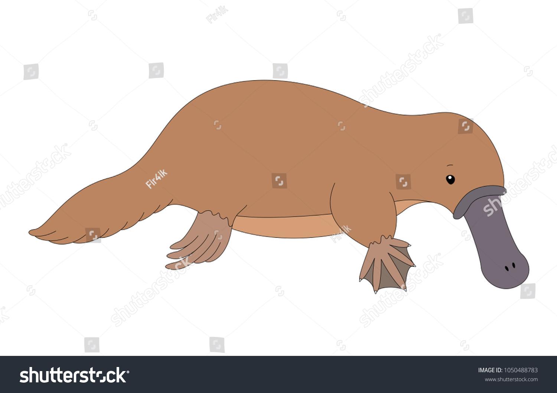 Funny Cute Platypus Illustration Kids Stock Vector (Royalty Free ...