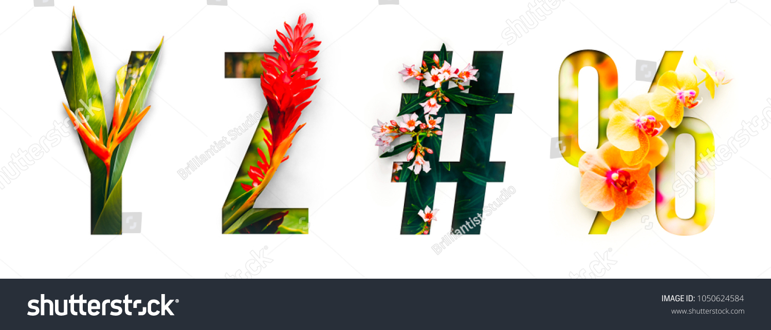 Flower font Alphabet y, z, #, %, made of Real alive flowers with Precious paper cut shape of letter. Collection of brilliant flora font for your unique decoration in spring, summer & many concept idea #1050624584
