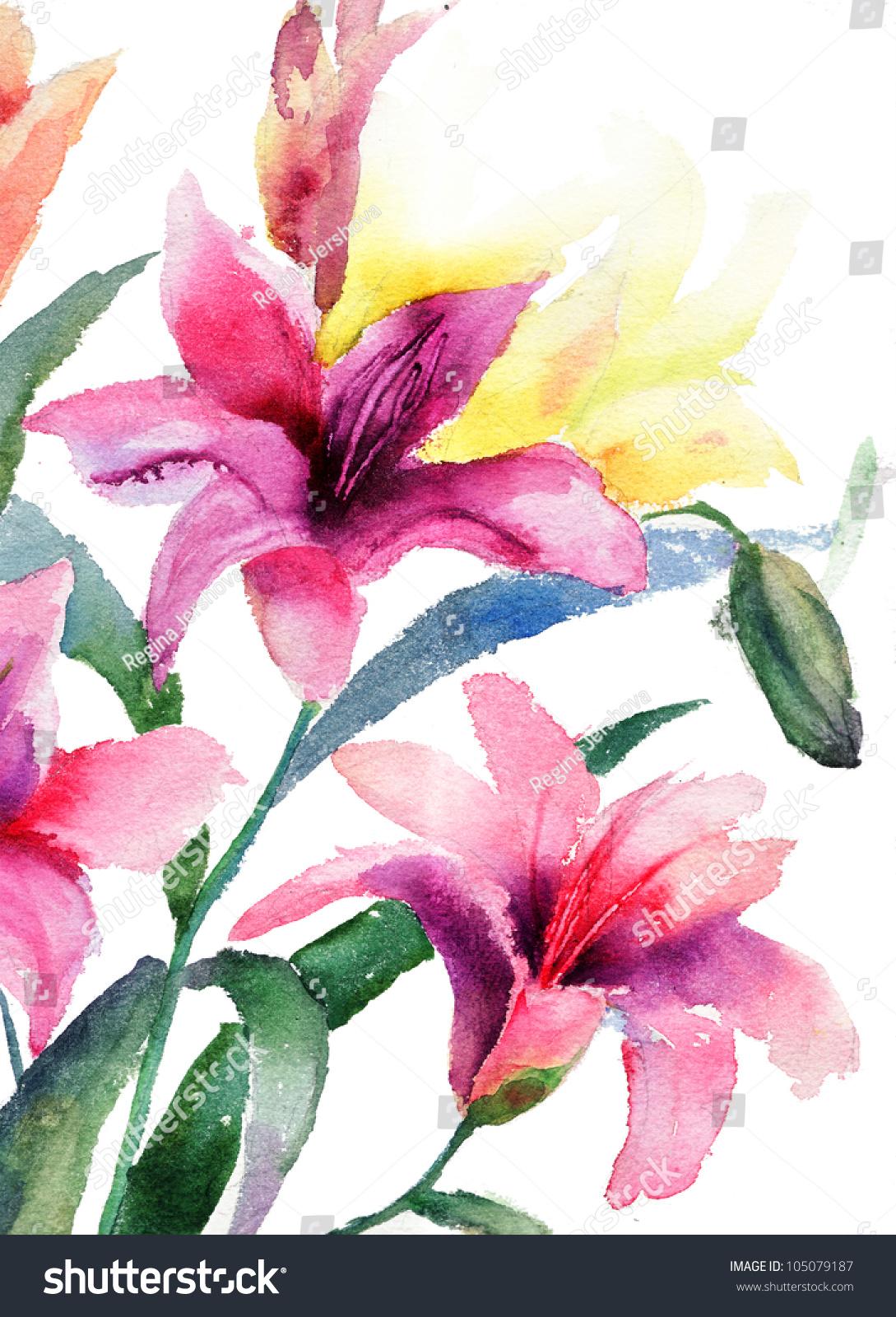 Beautiful lily flowers watercolor illustration stock illustration beautiful lily flowers watercolor illustration izmirmasajfo