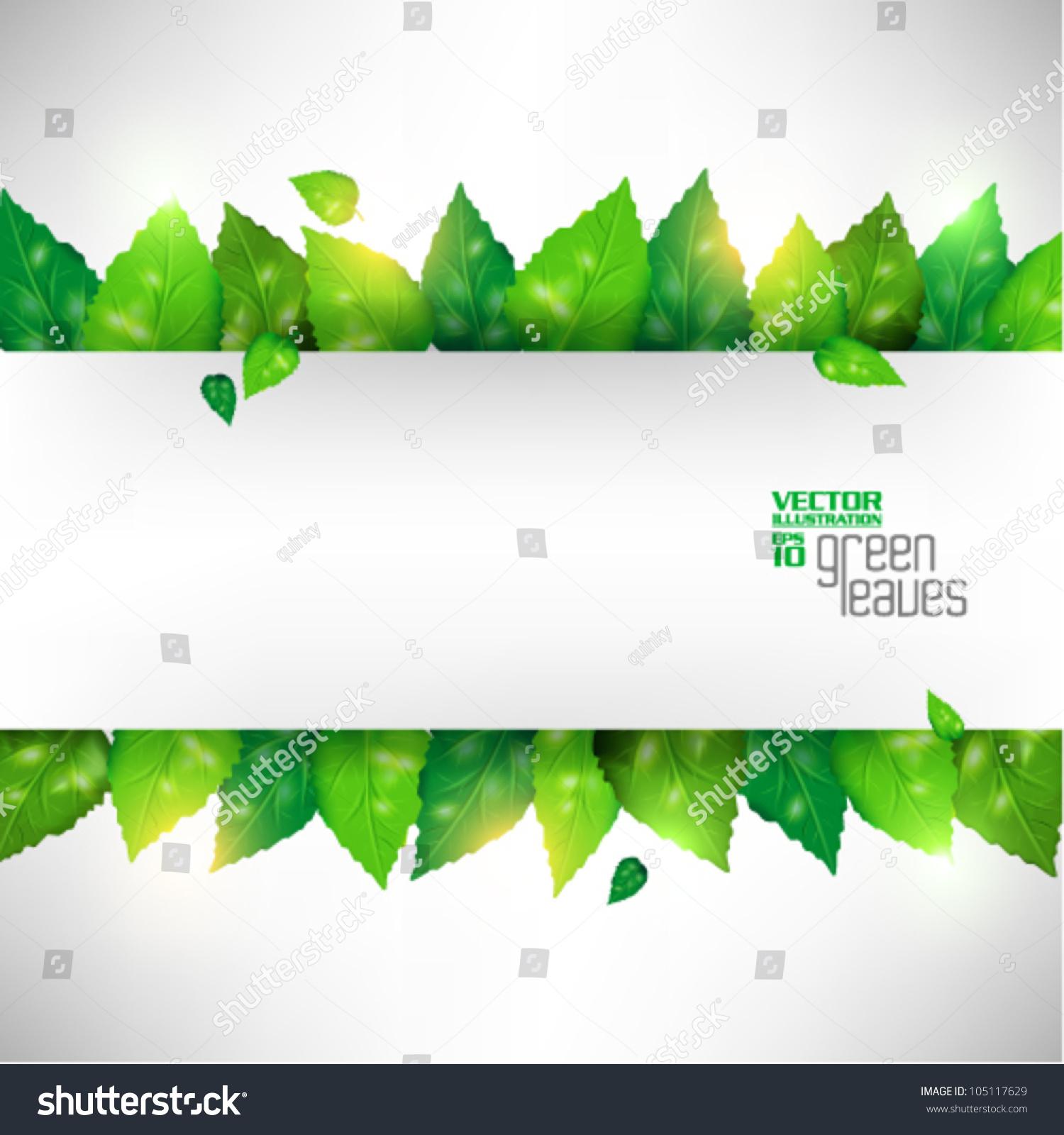 Modern green fresh leaves vector design 105117629 for Fresh design