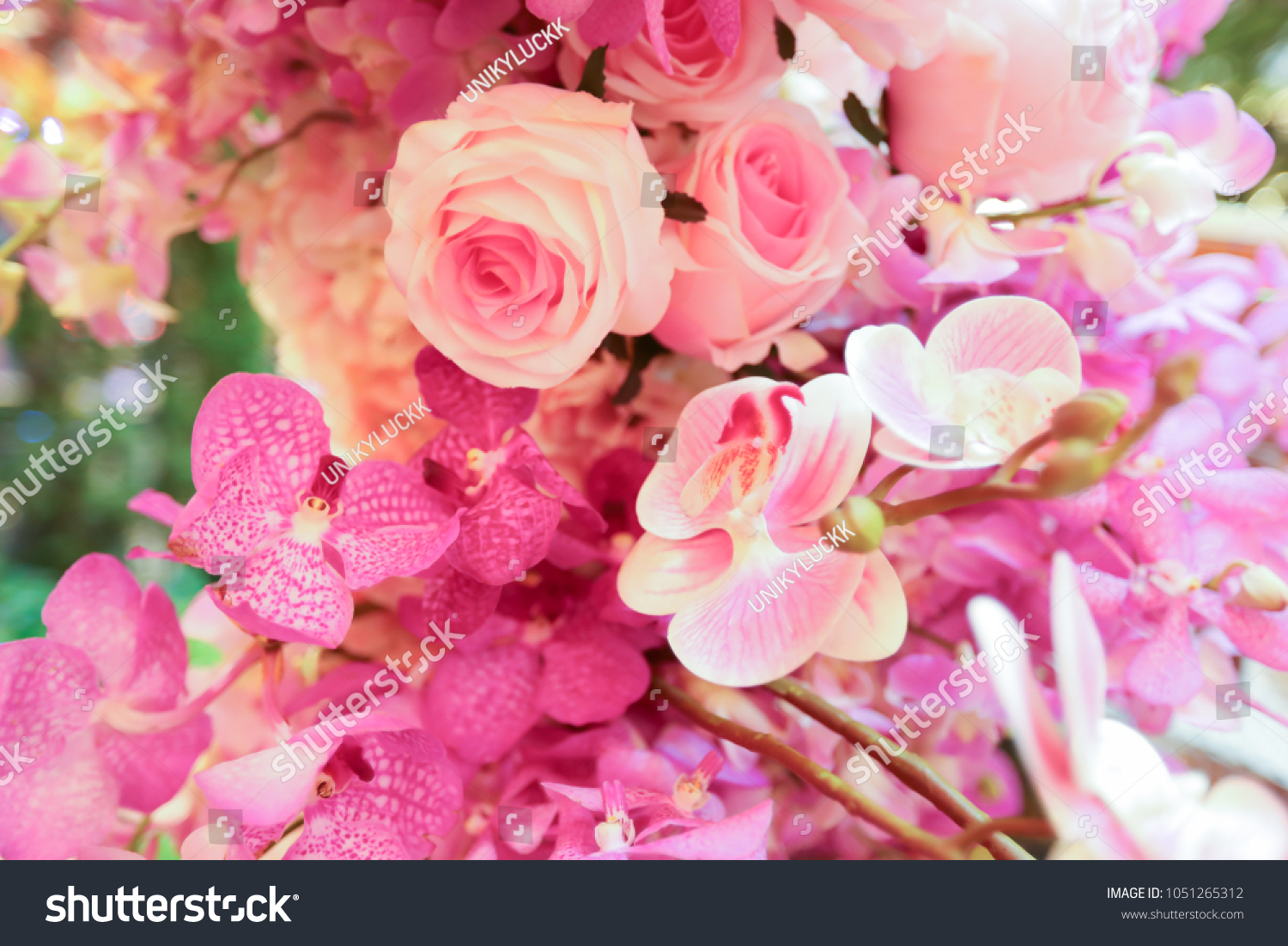 Blur Image Background Colorful Beautiful Flowers Stock Photo Edit